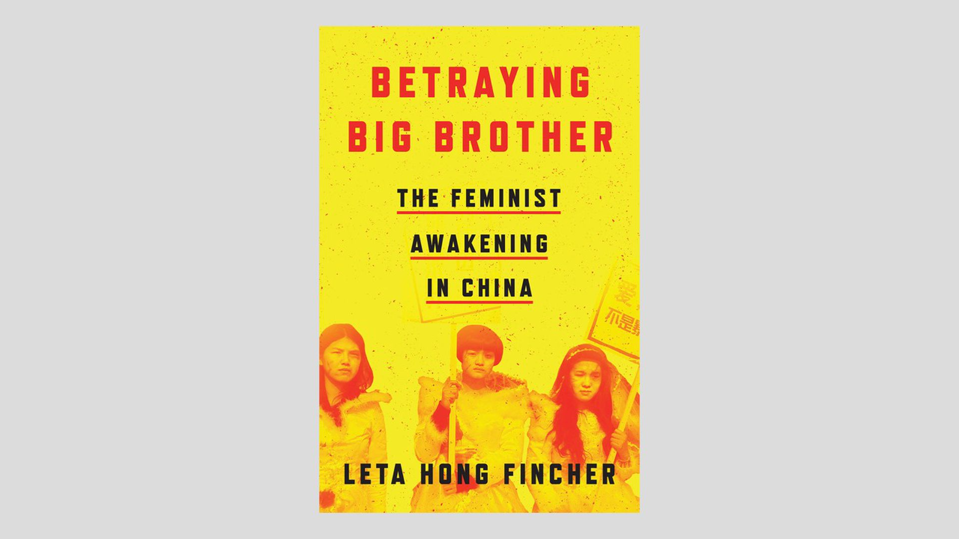 "Photo of book cover ""Betraying Big Brother"" about China"