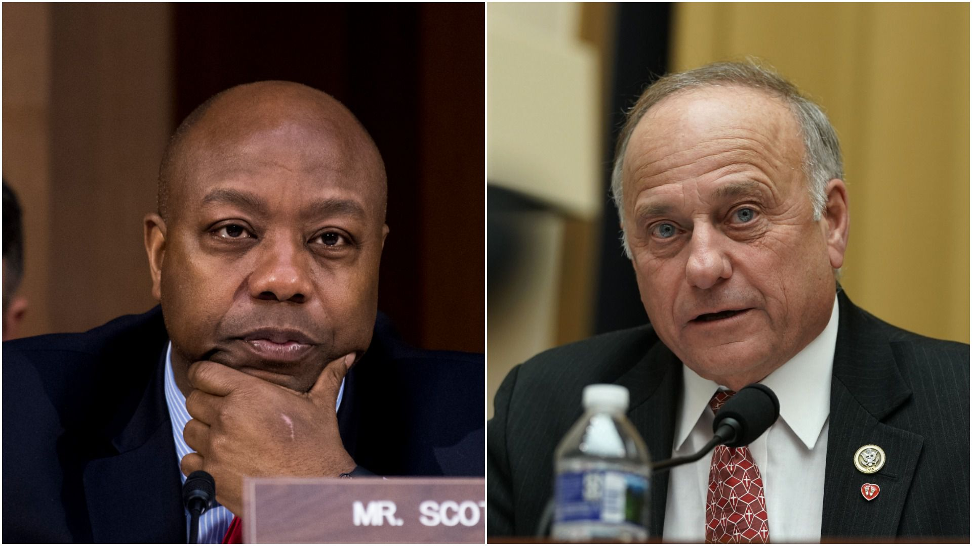 Tim Scott and Steve King