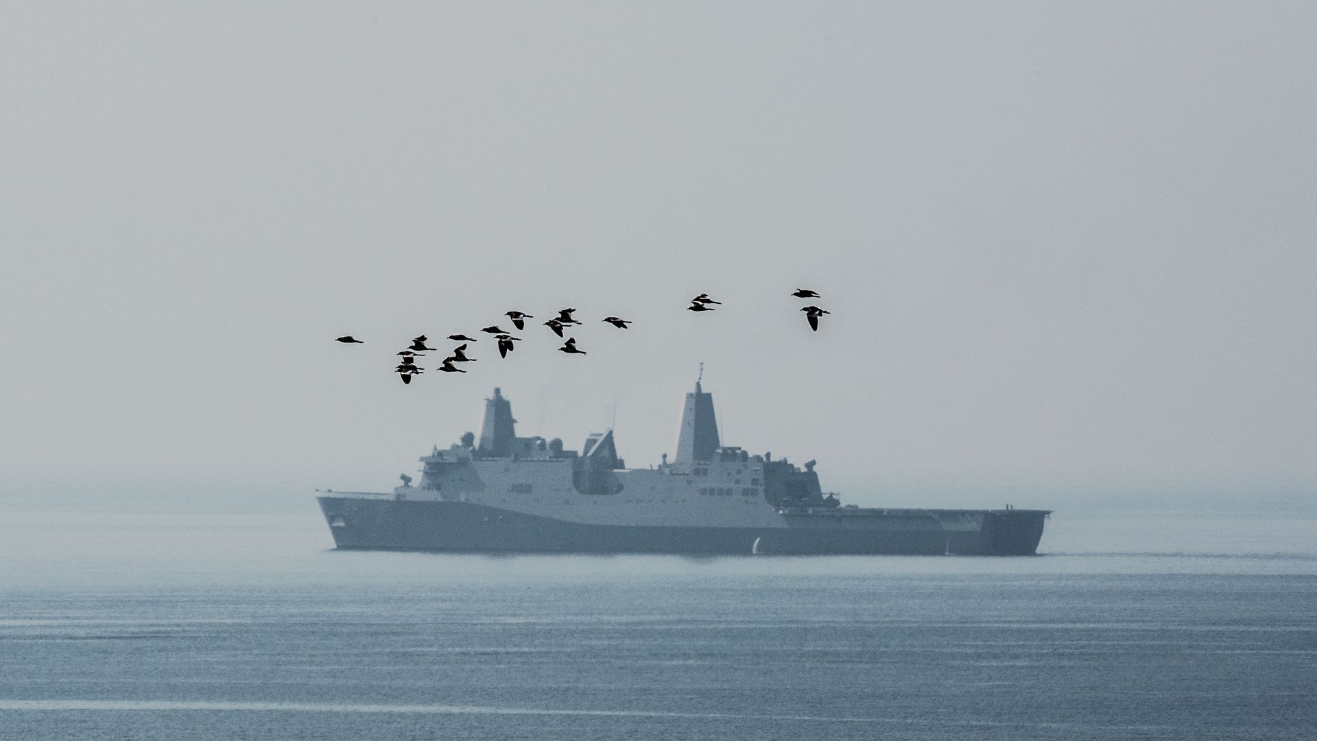 A flock of birds flies in the vicinity of the USS Green Bay, an amphibious transport dock as it manoeuvrers off the Thai coast during an amphibian landing exercise in Chonburi on February 17, 2017