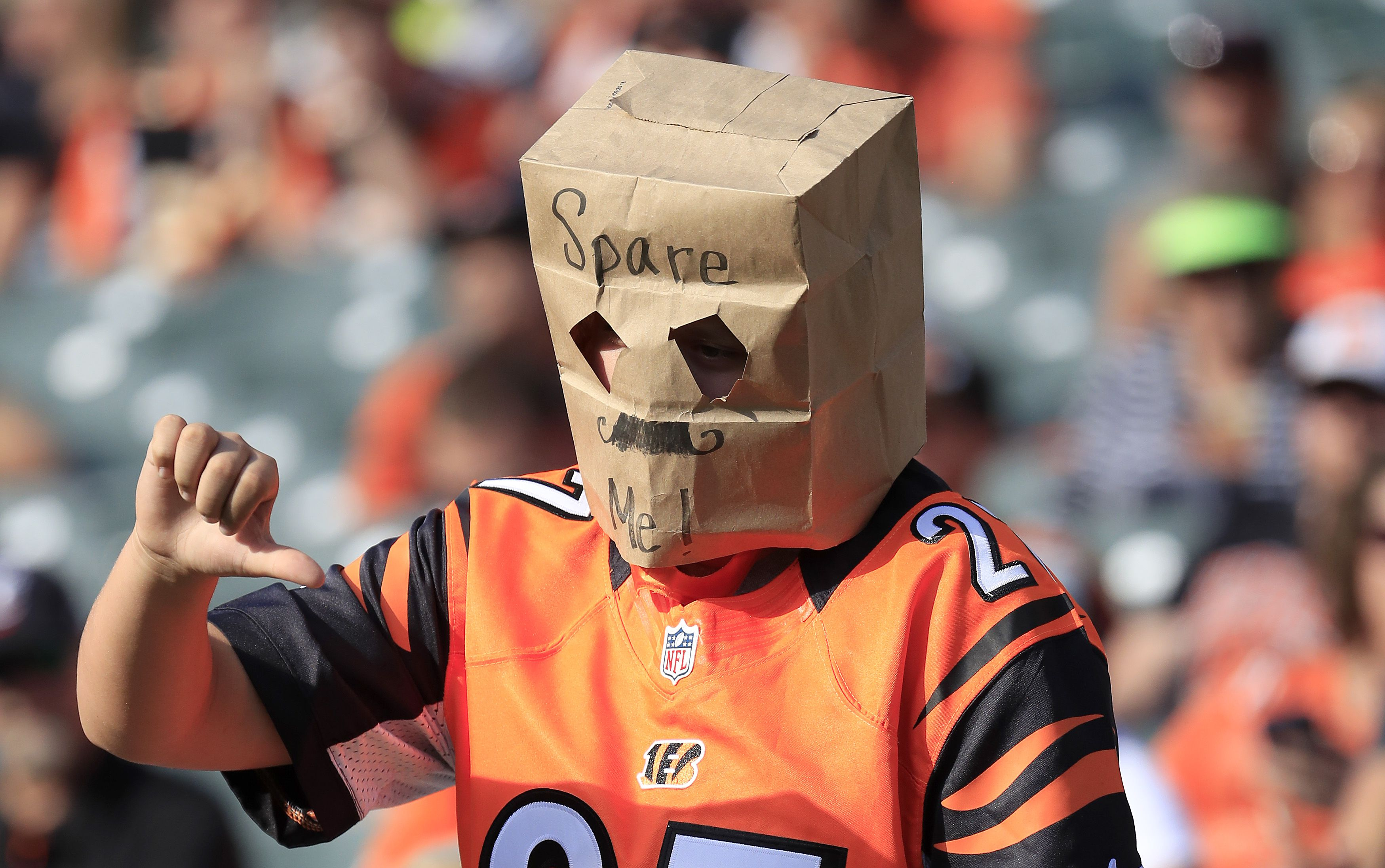 Bengals fan with bag on head