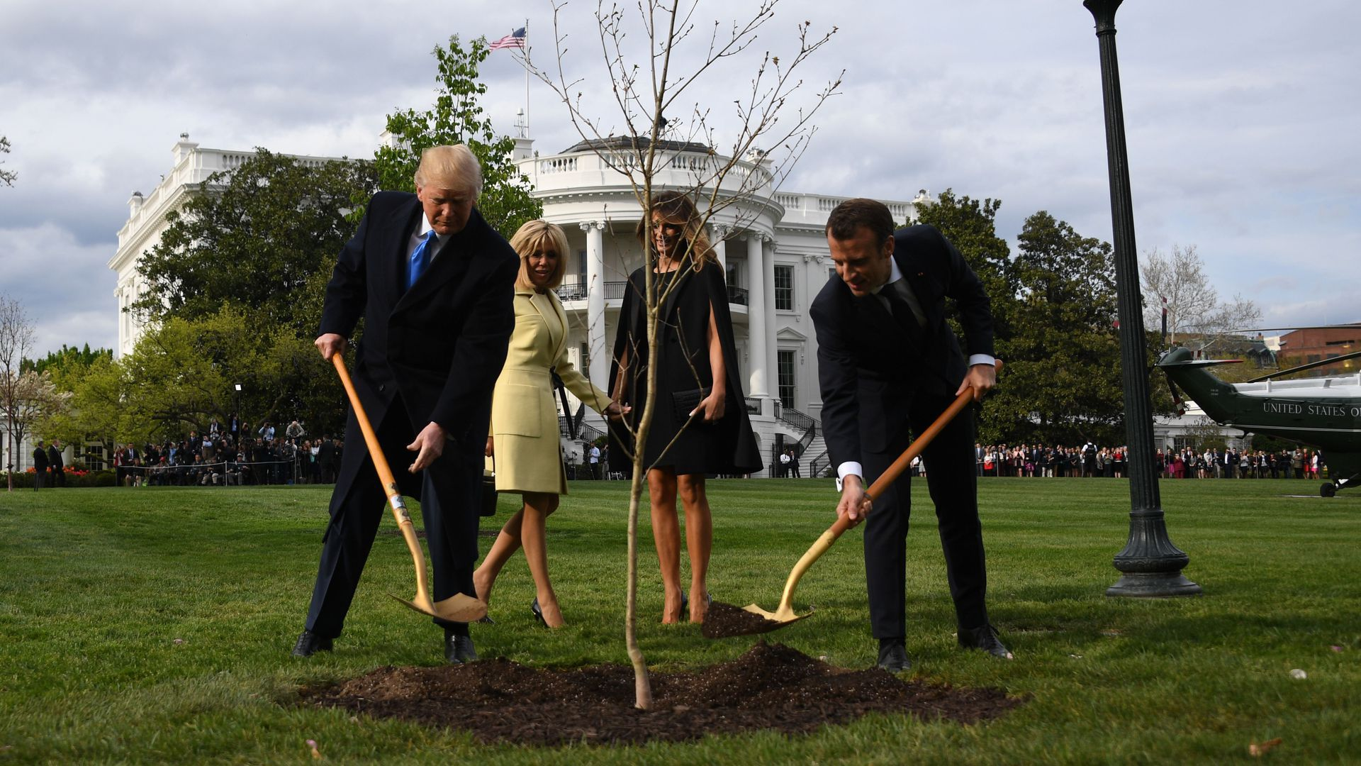 Trump and Macron shovel dirt over a newly planted tree at the White House
