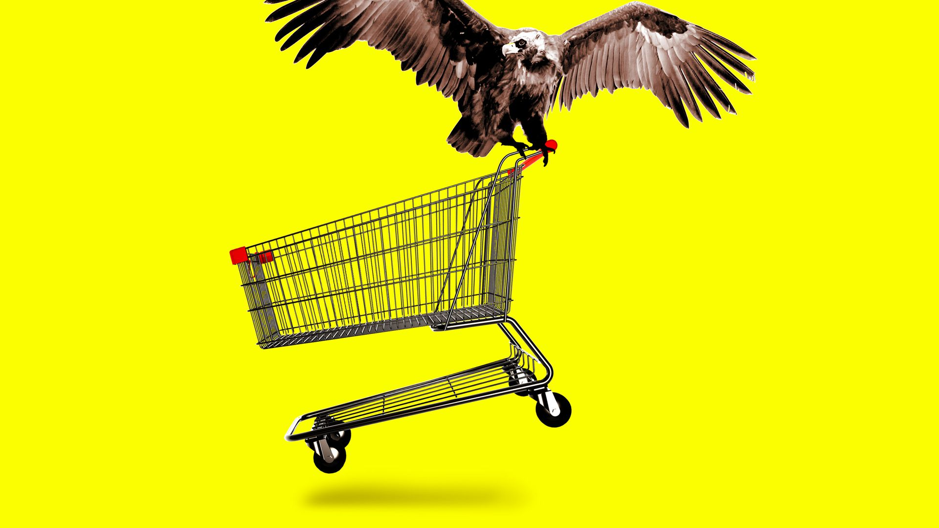 Vulture carrying away a shopping cart