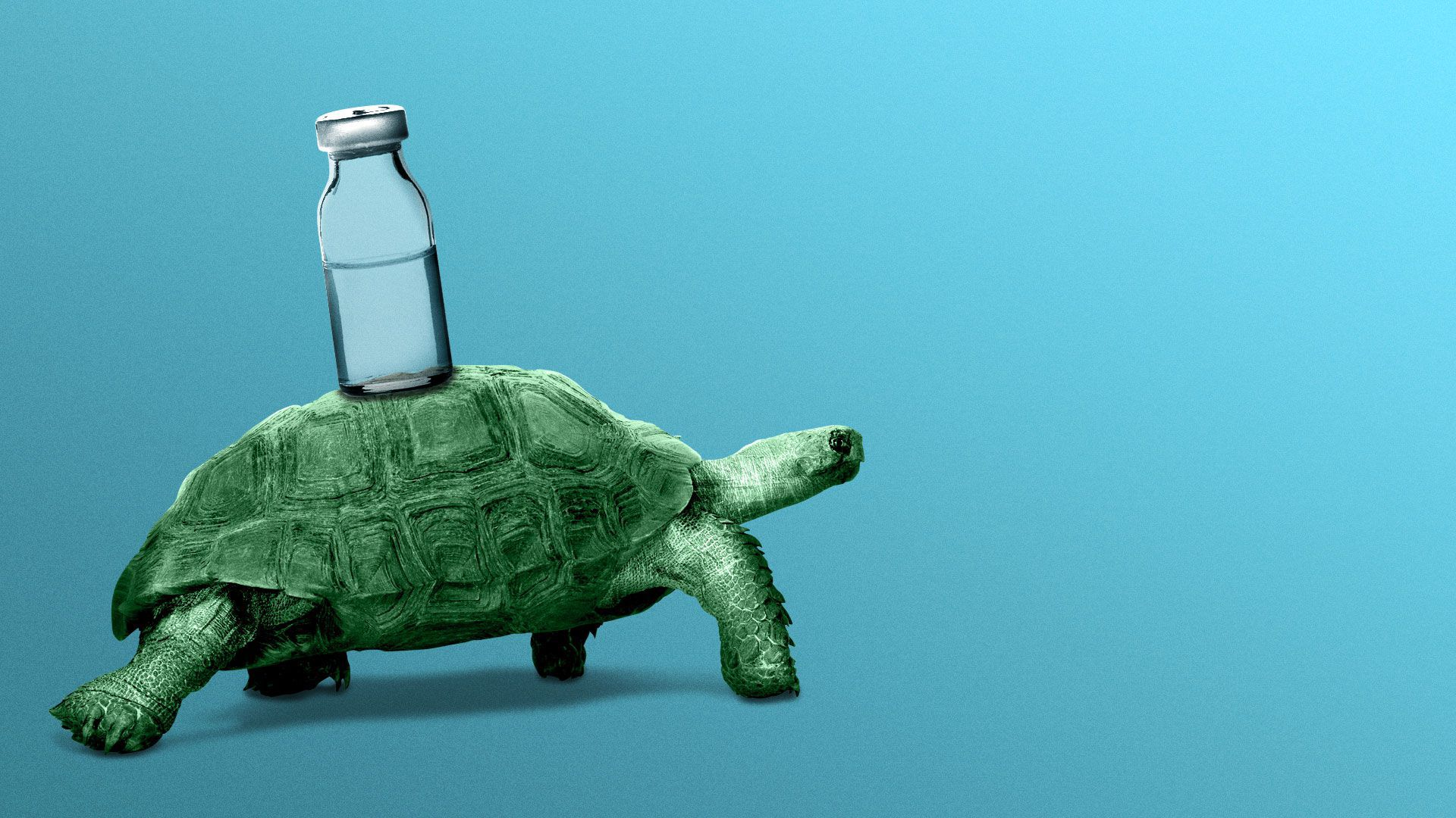 Illustration of a turtle carrying a vial of liquid