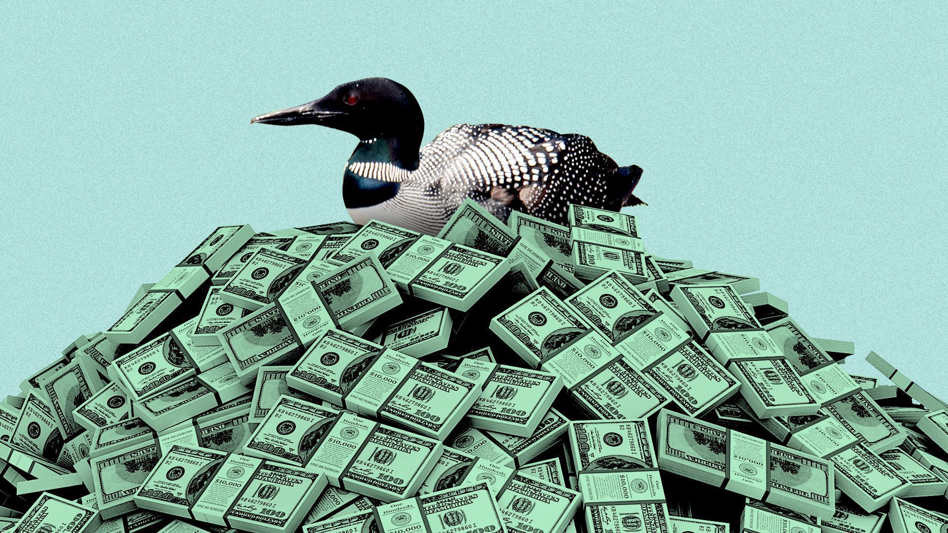 A duck sits on top of a pile of money.