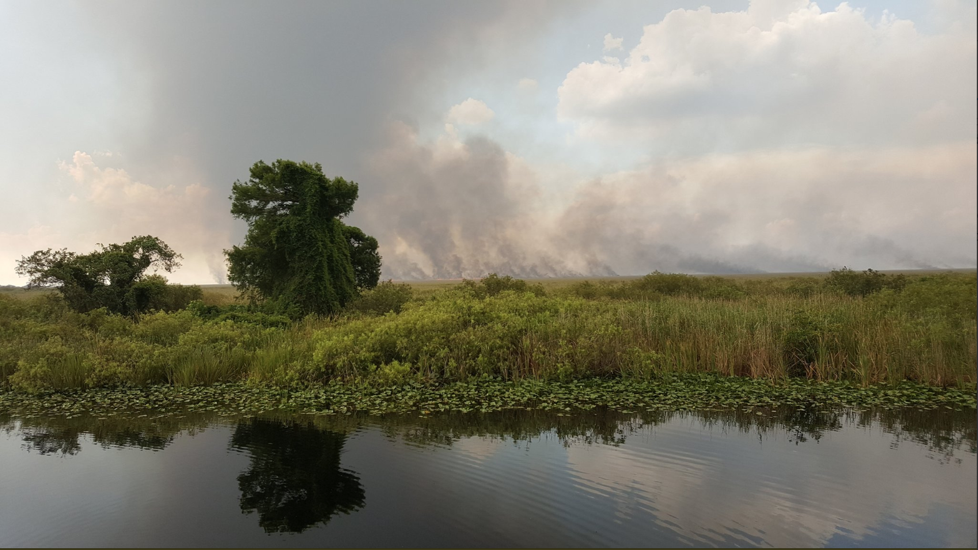 A  Florida Forest Service picture of the Everglades fire.