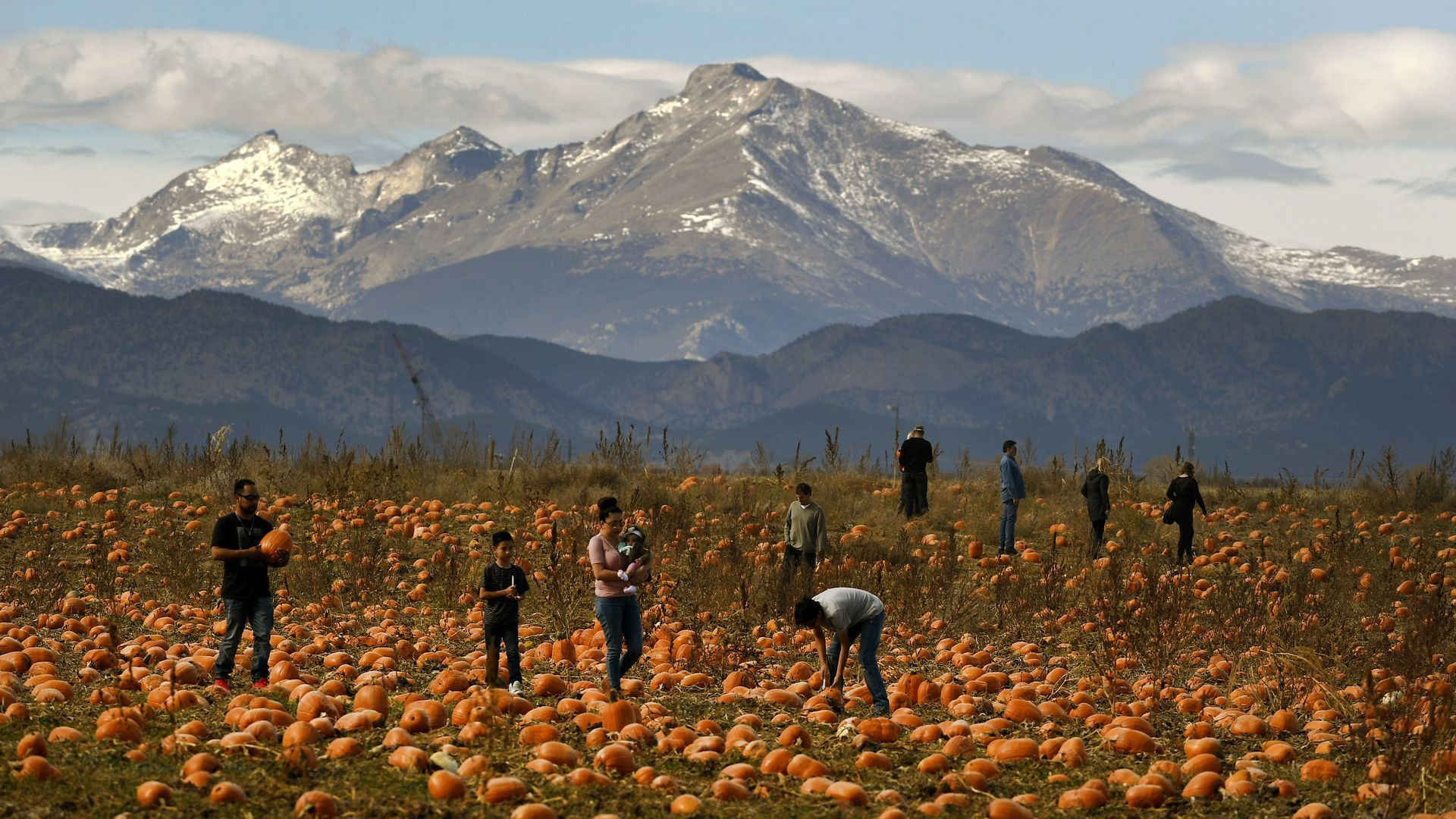 Rock Creek Farm Pumpkin Patch in Broomfield, one of Yelp's top-rated patches in the country.