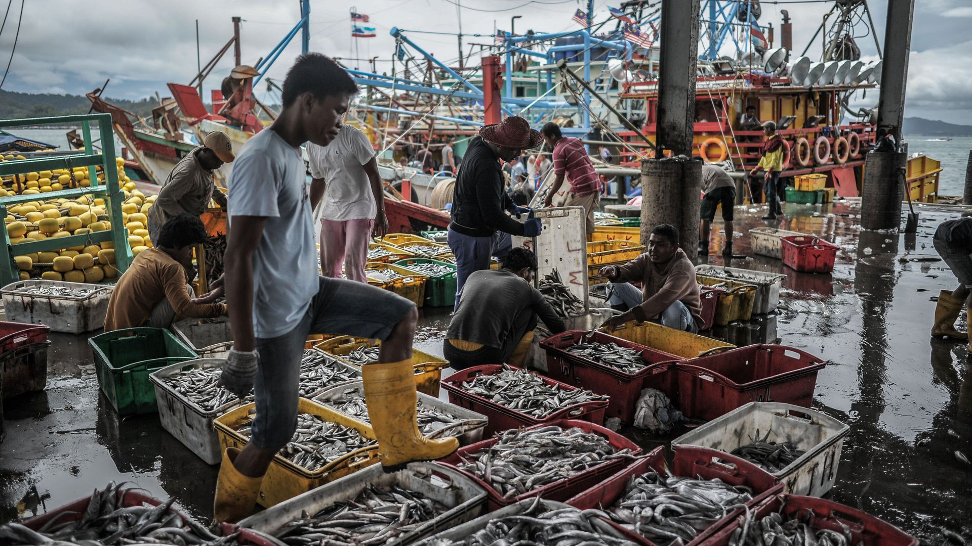Fisherman stands with his boot on a crate of fresh fish