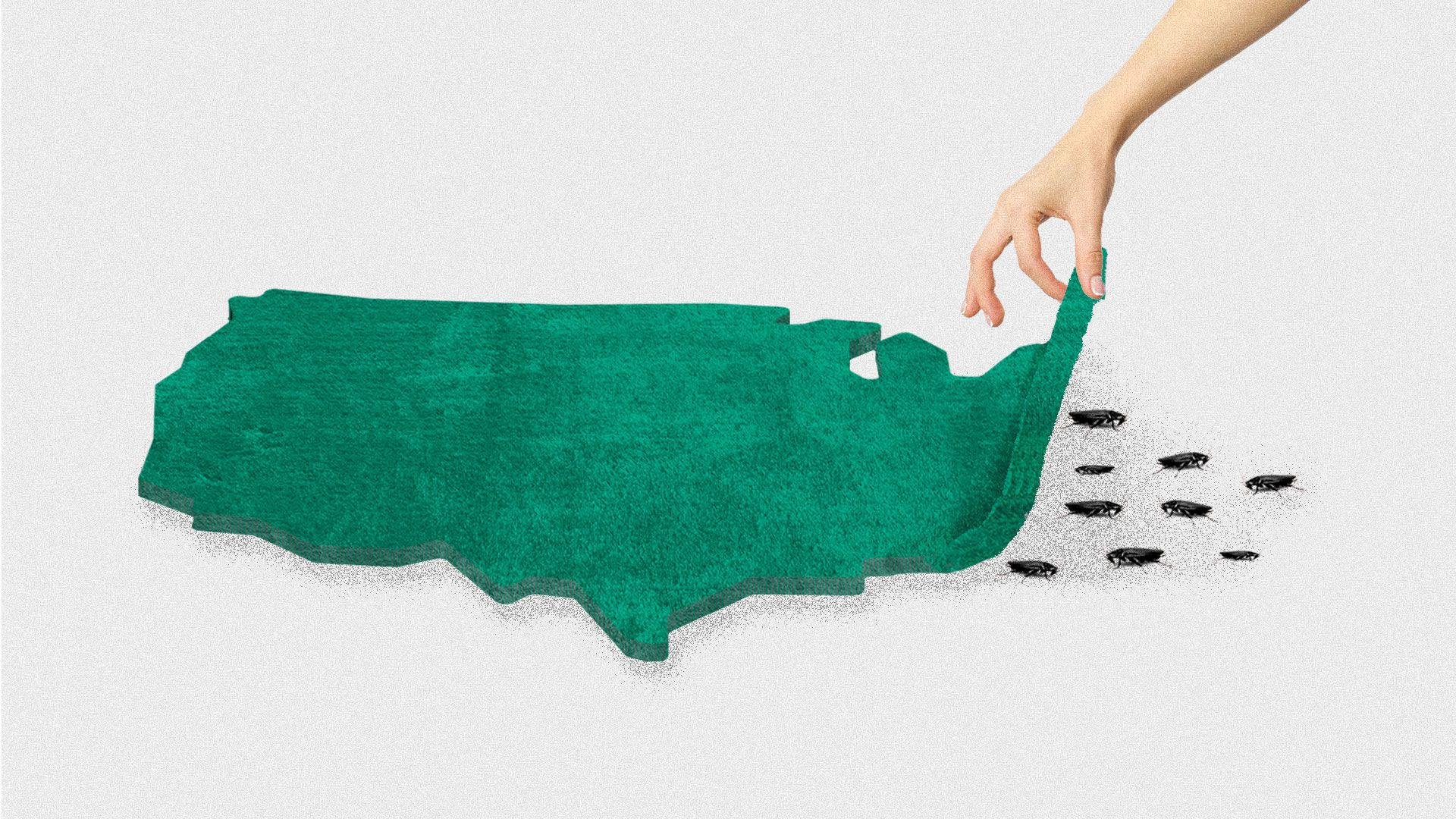Illustration of the United States as a rug, a hand is pulling it up and revealing cockroaches underneath.