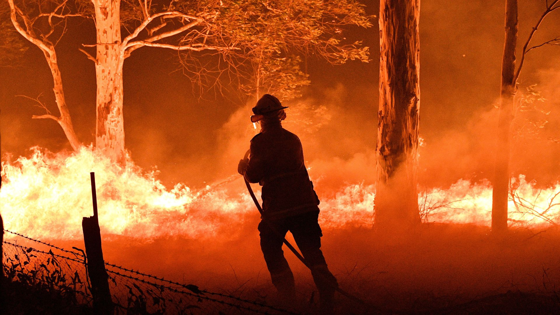 A firefighter hosing down trees and flying embers in an effort to secure nearby houses from bushfires near the town of Nowra in the Australian state of New South Wales.