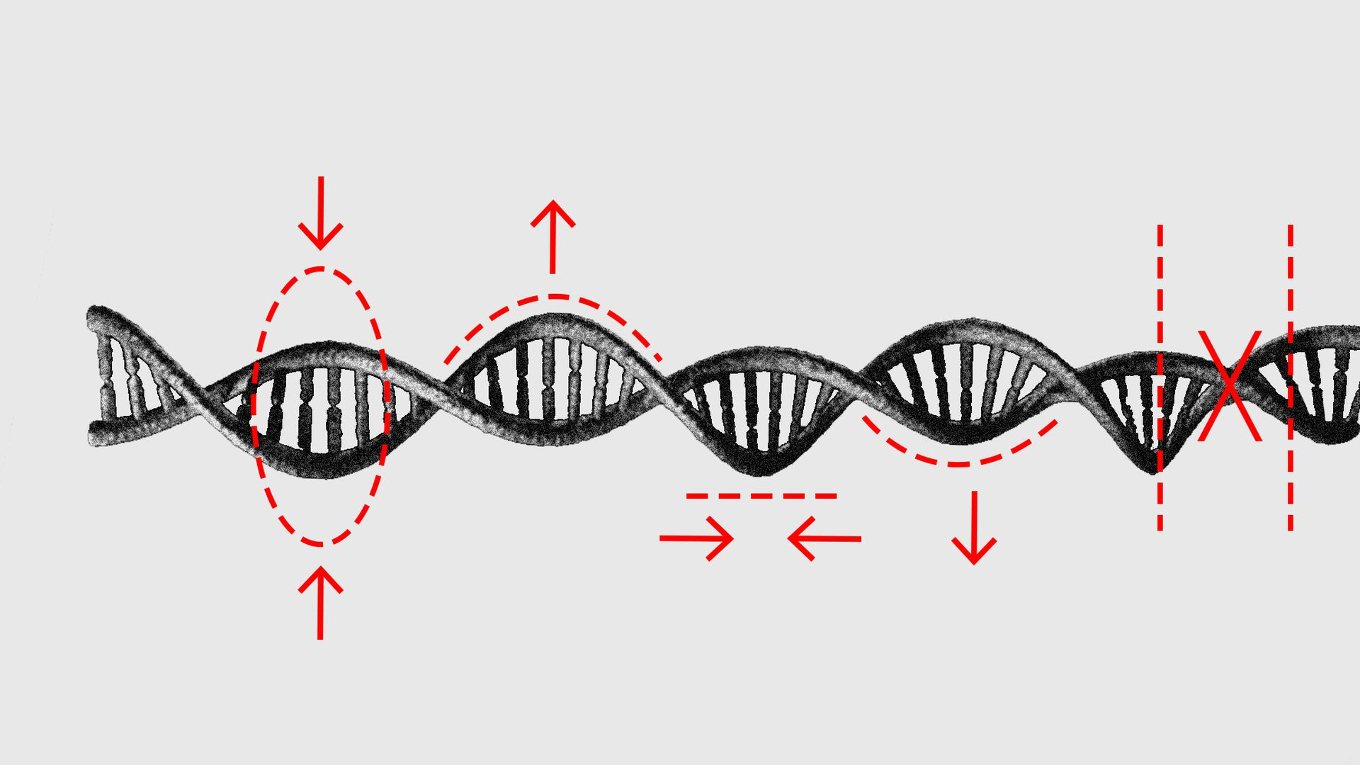 An illustration of DNA with edit marks.