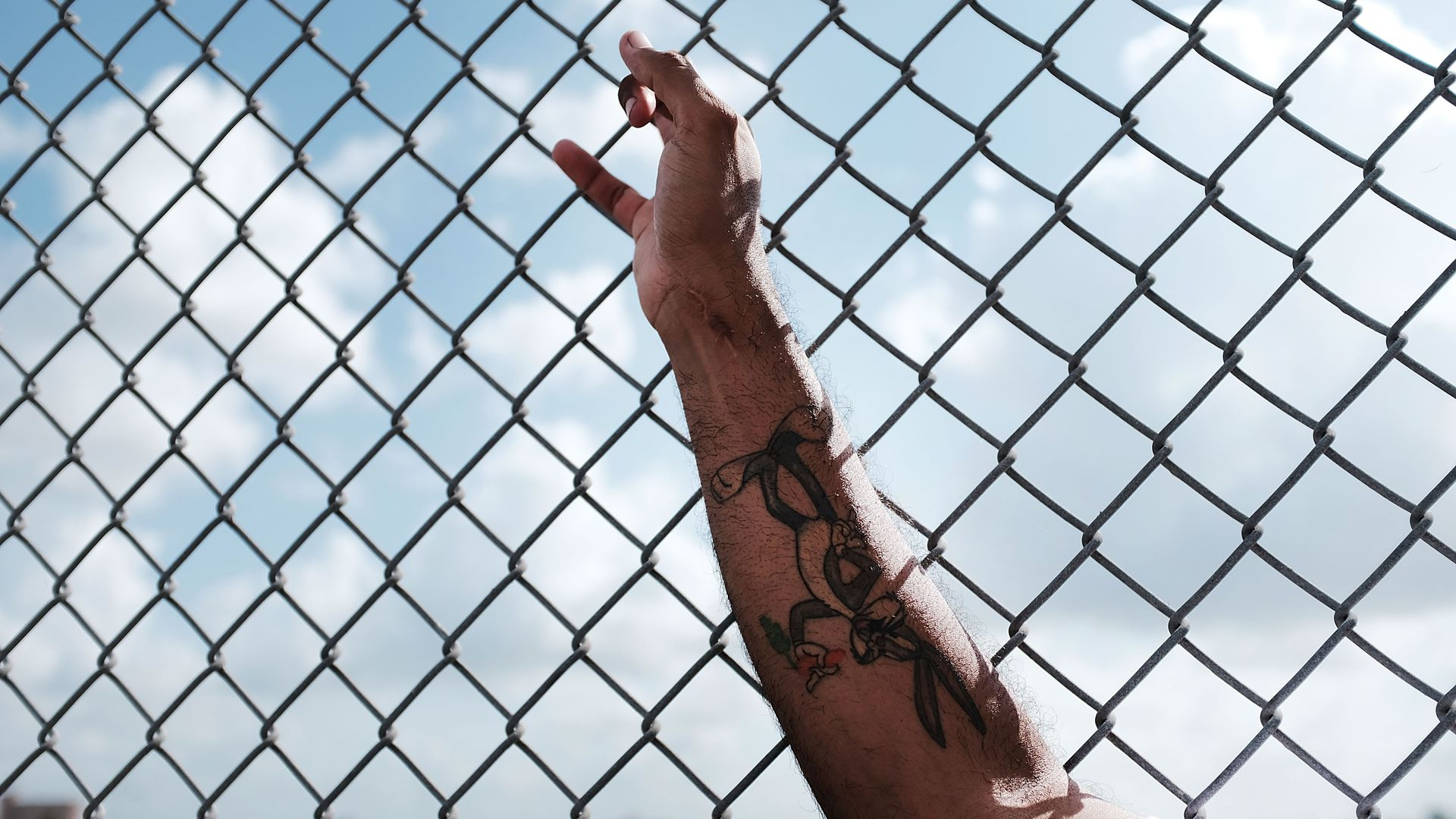 A man's arm holds a chain-link fence.