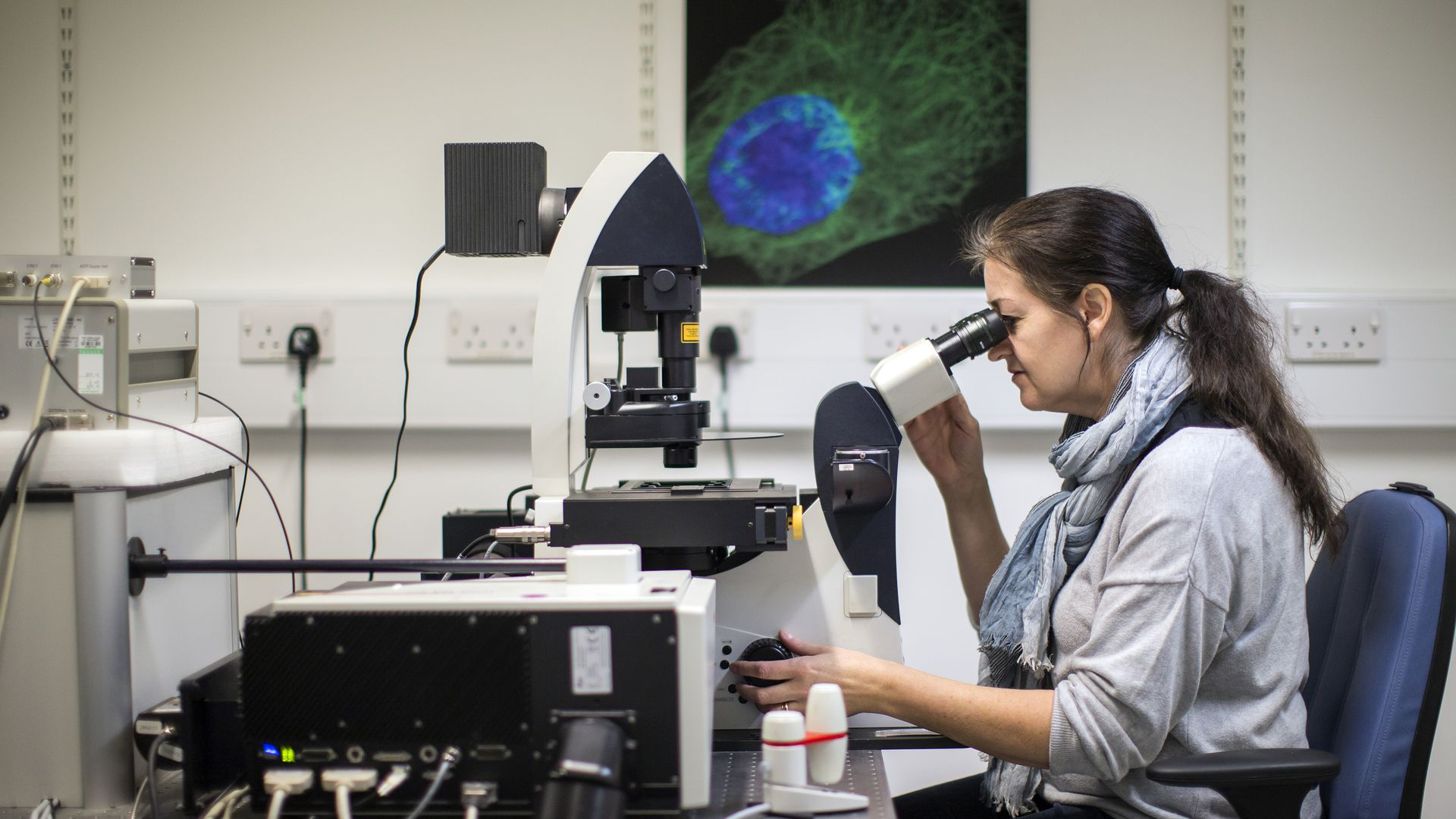 A scientist studies cells through a microscope in a lab.