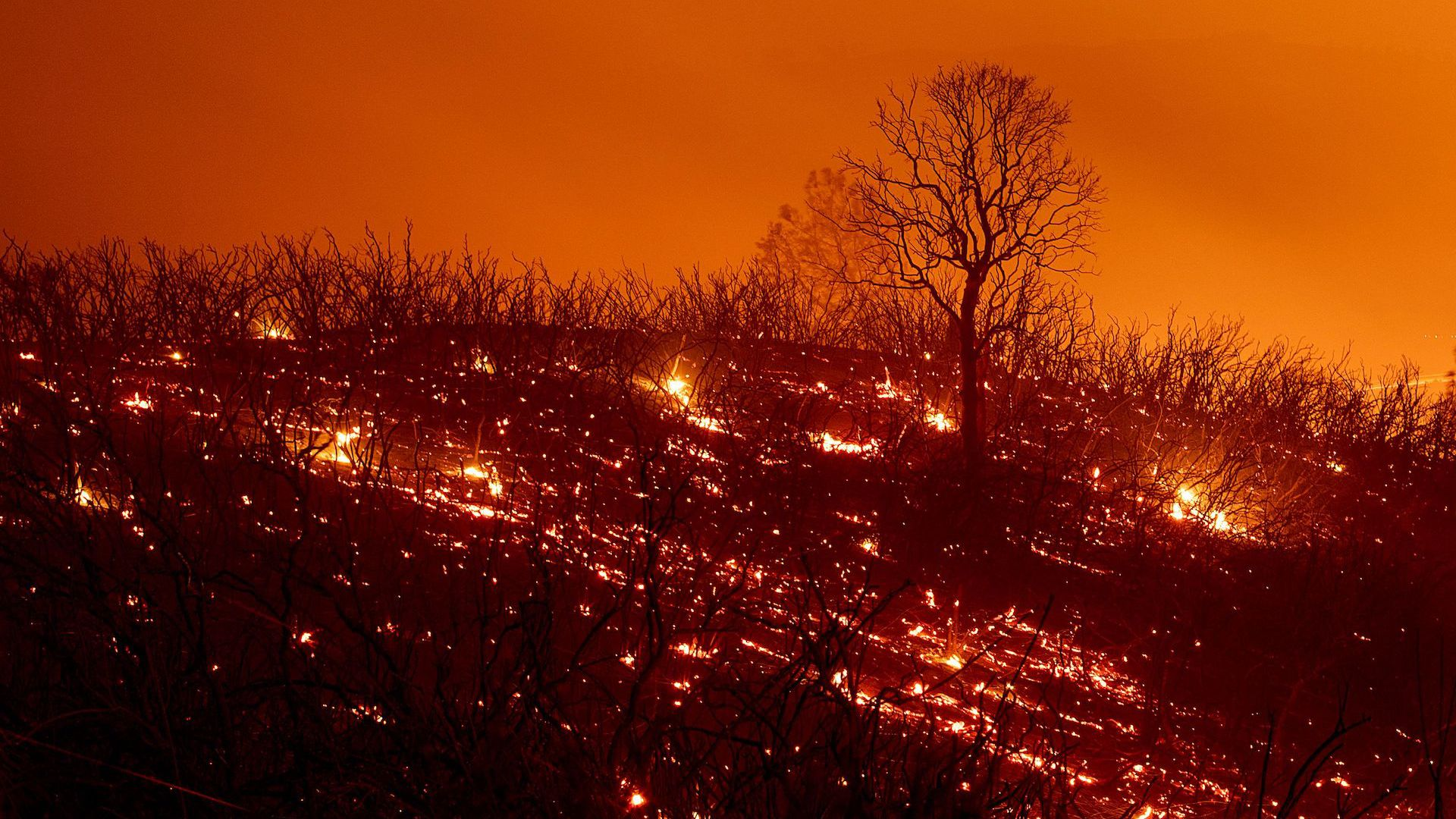 Embers smoulder along a hillside after the Ranch Fire, part of the Mendocino Complex Fire.
