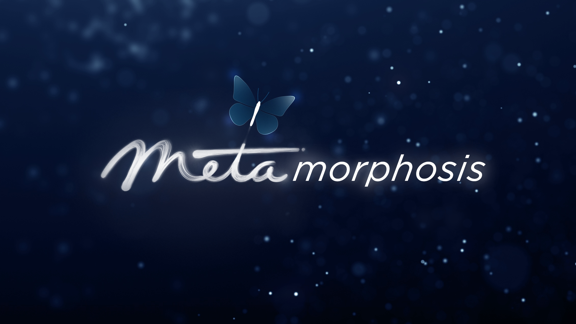 An image with the old Meta logo combined with letters to form the word metamorphosis