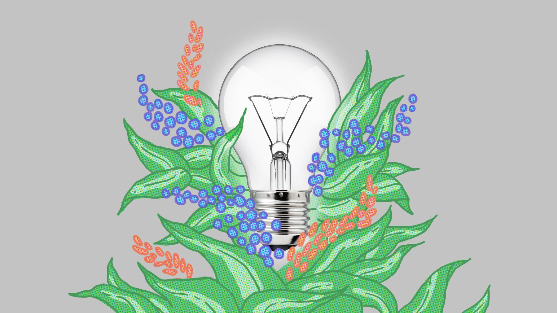 A bright light bulb surrounded by foliage