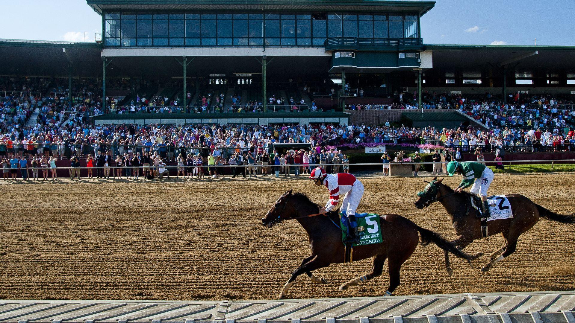 Horse racing in Delaware