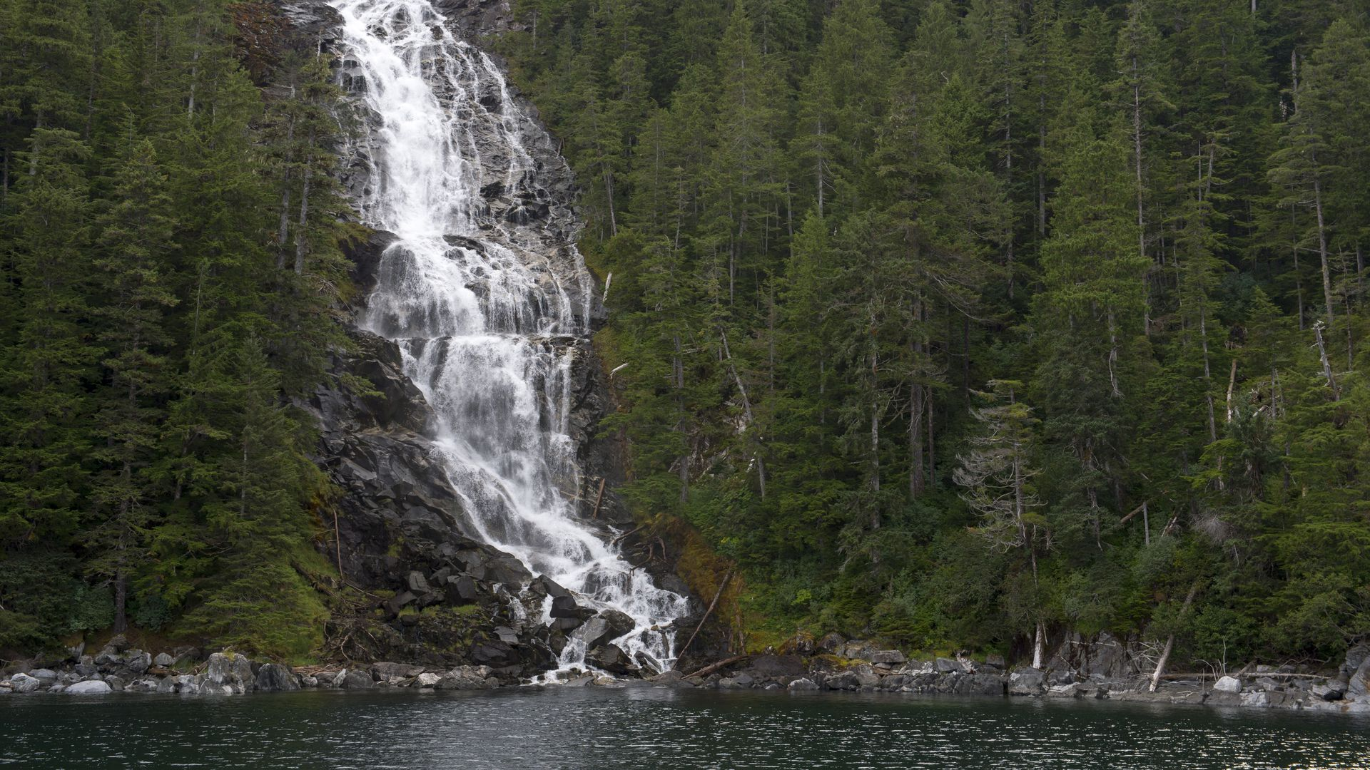 USDA Forest Service wants to expand logging in Tongass National Forest