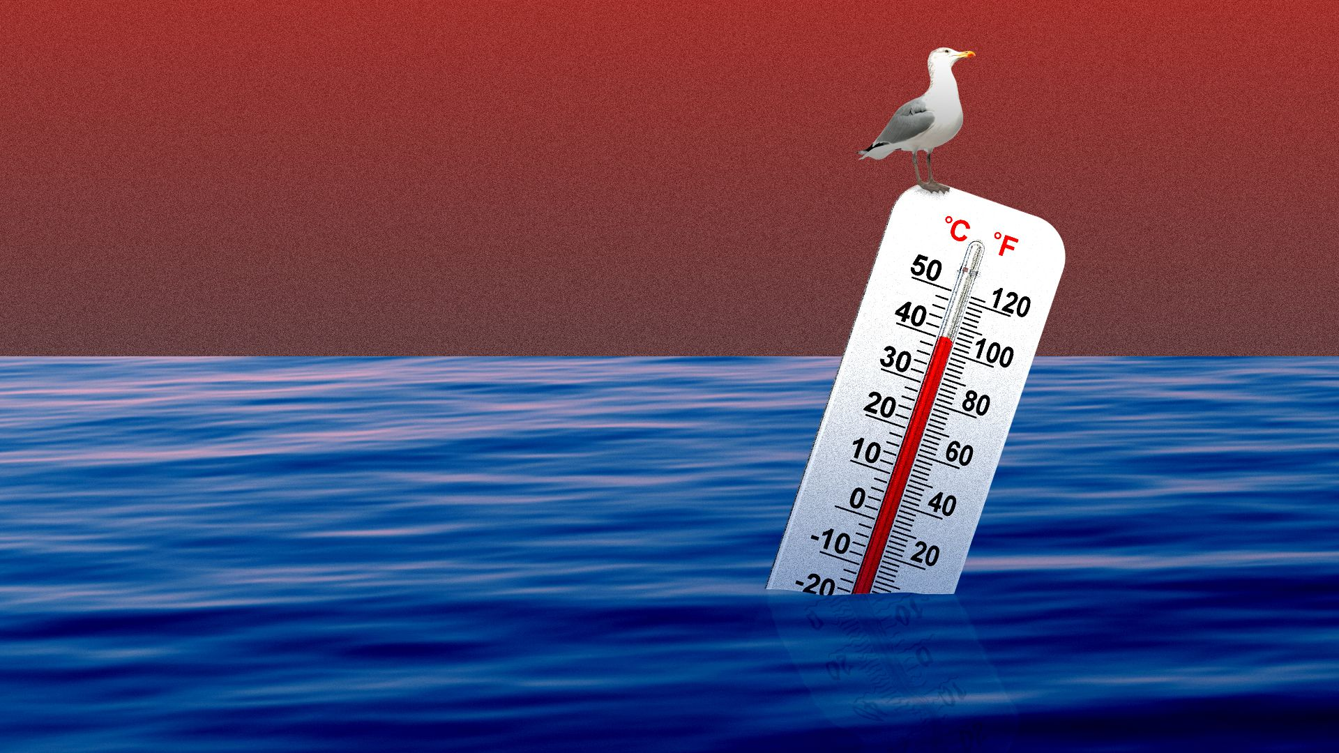 Illustration of thermometer floating in the ocean.