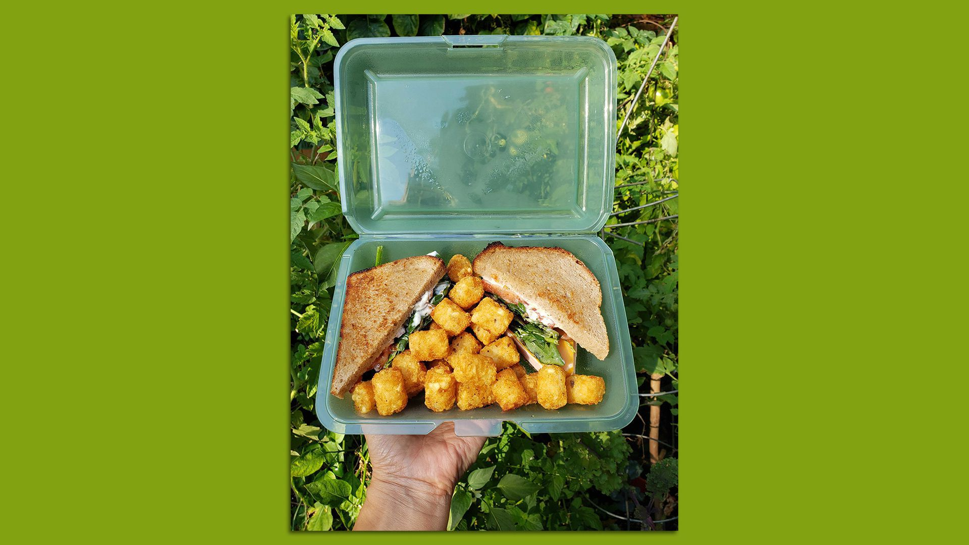 A returnable takeout container with a sandwich and tater tots inside.