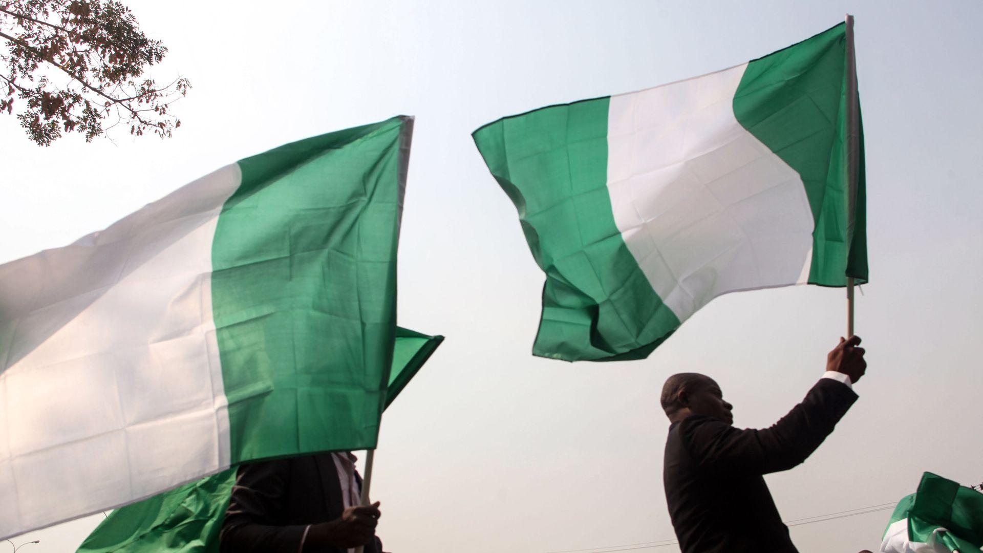 The nigerian flag.