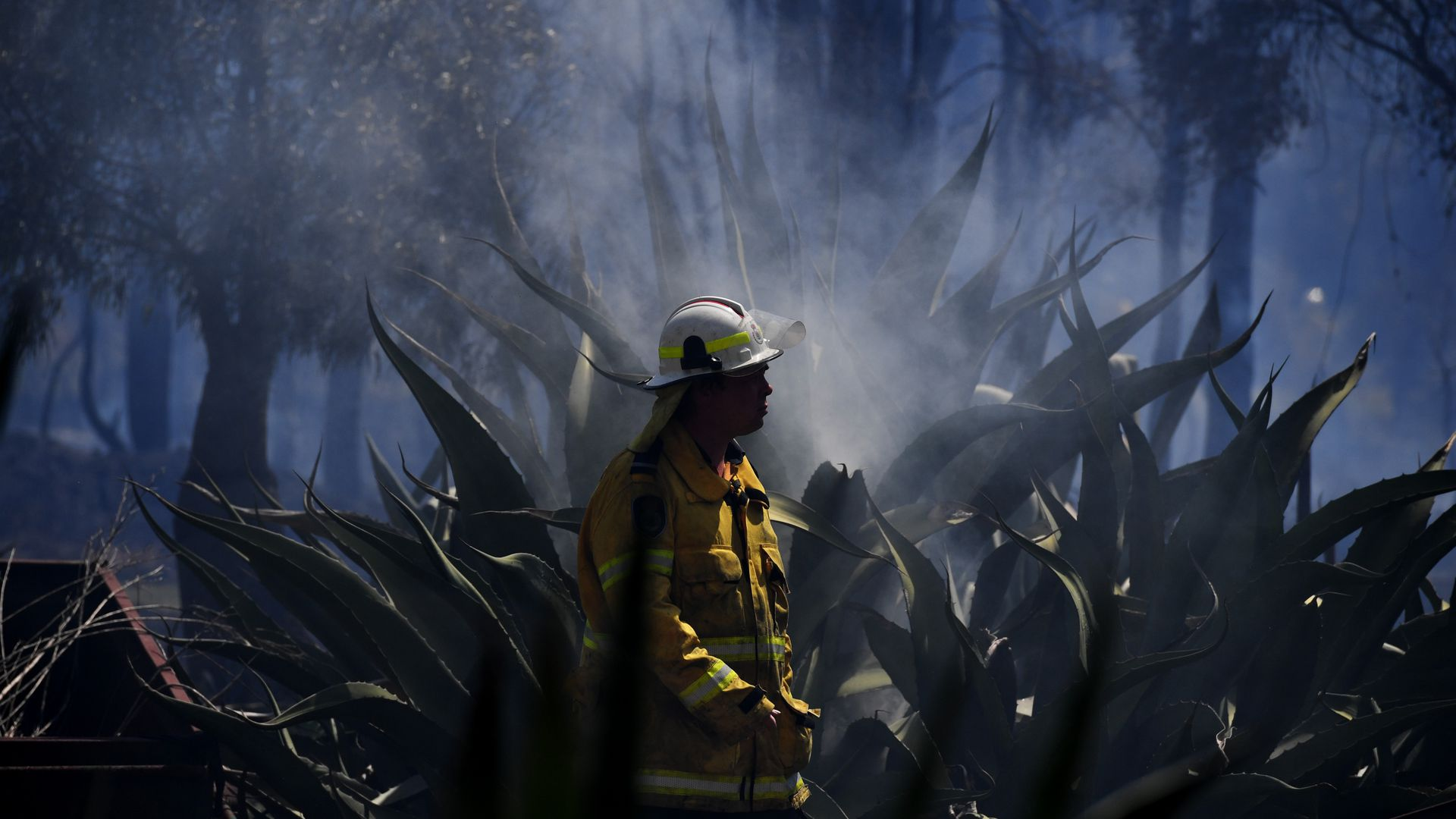 A NSW Rural Fire Service firefighter mops up after a bushfire in the suburb of Llandilo on November 12