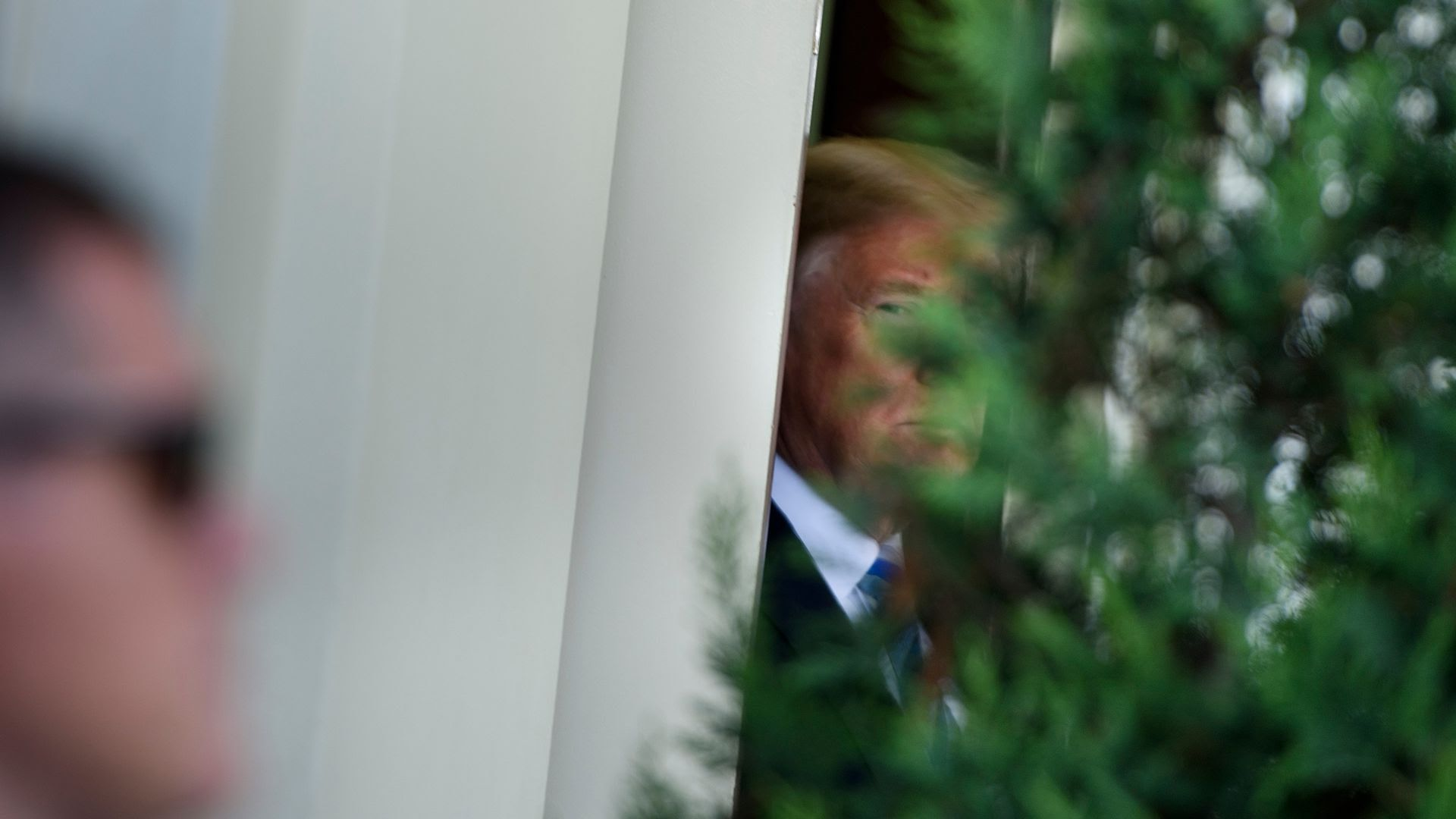 Trump lurks behind a bush at the White House