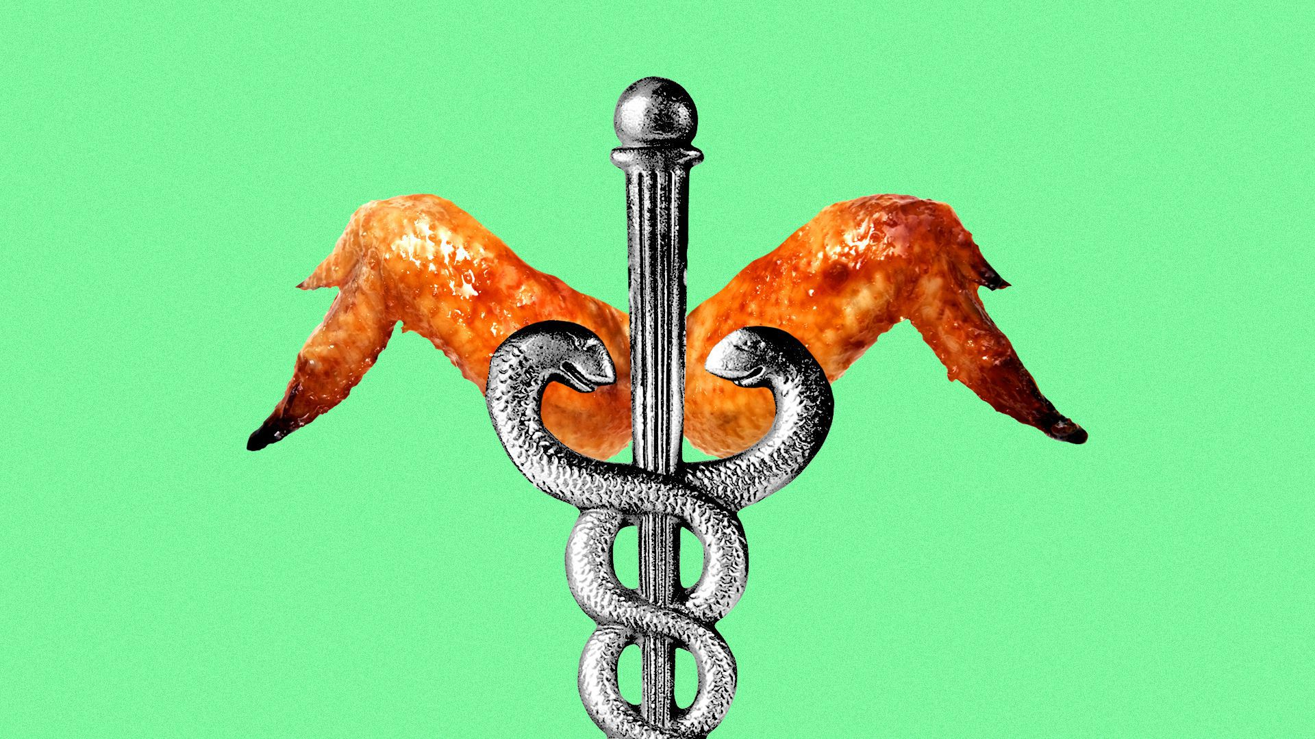 Illustration of a caduceus with cooked chicken wings instead of regular wings.