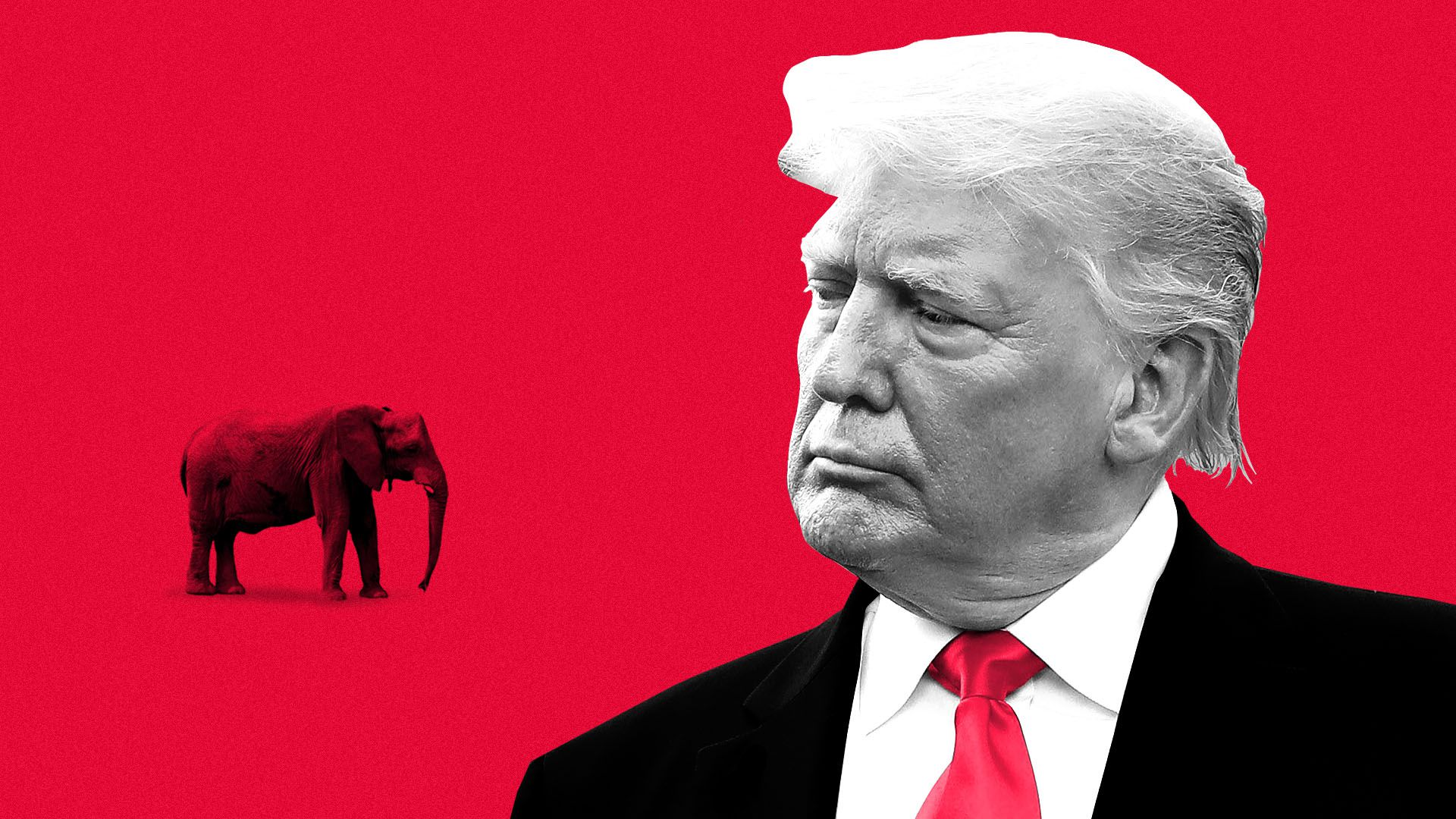 Illustration of Donald Trump staring down a small elephant.