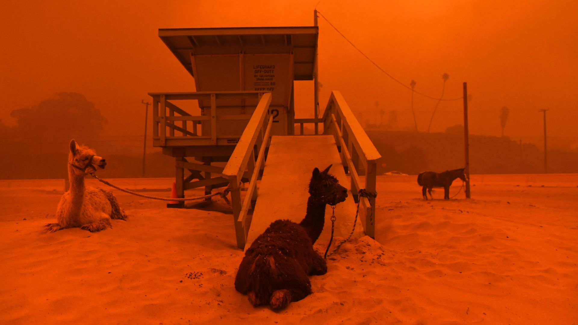 in photos woolsey fire wreaks havoc on southern california axios