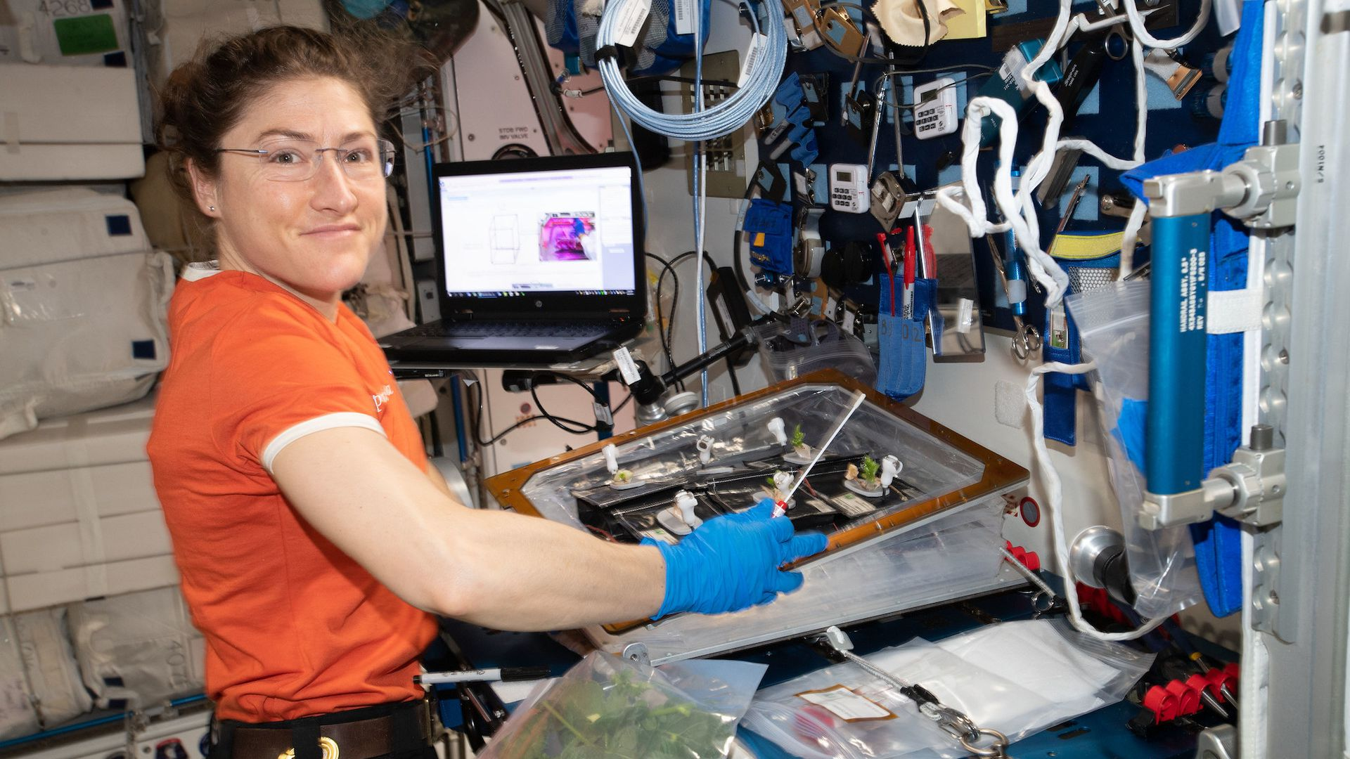 NASA astronaut Christina Koch performing an experiment on the International Space Station