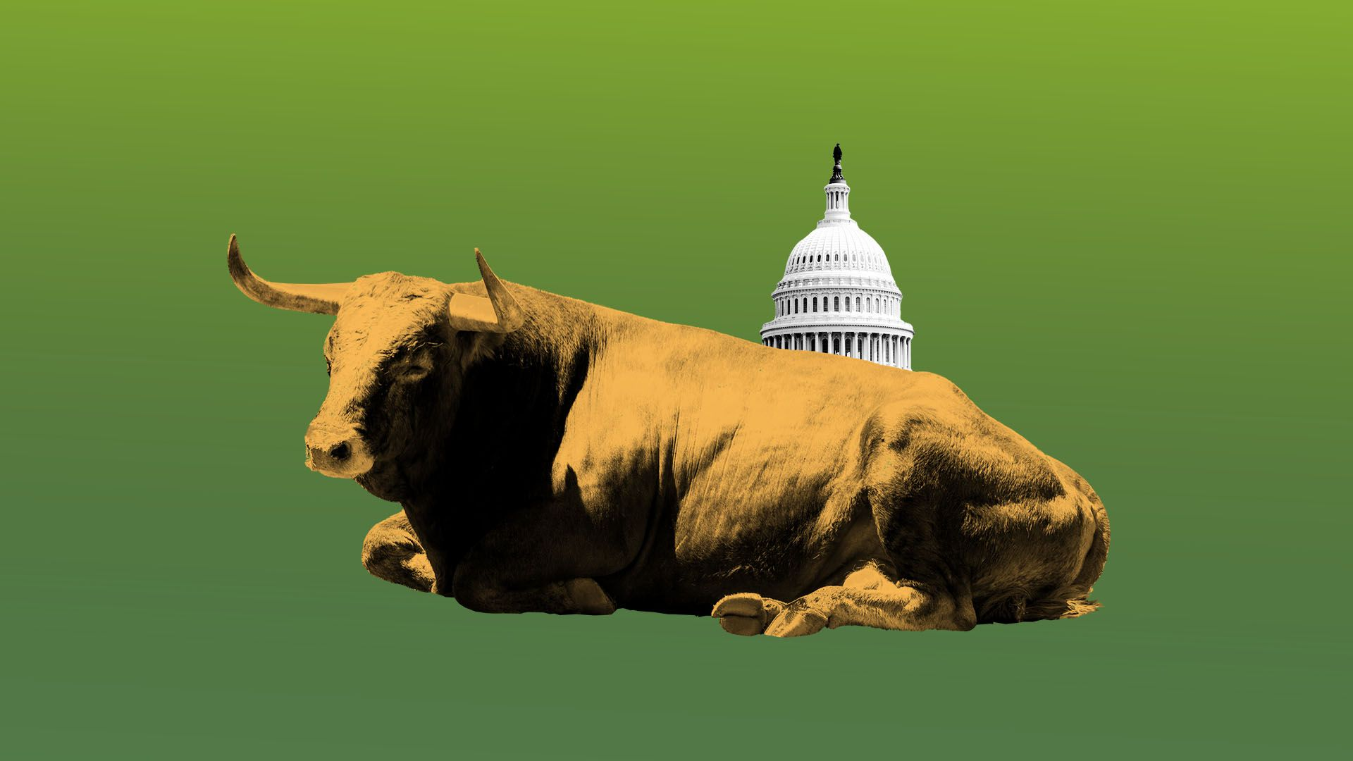 Illustration of bored bull with Capitol Building in the background