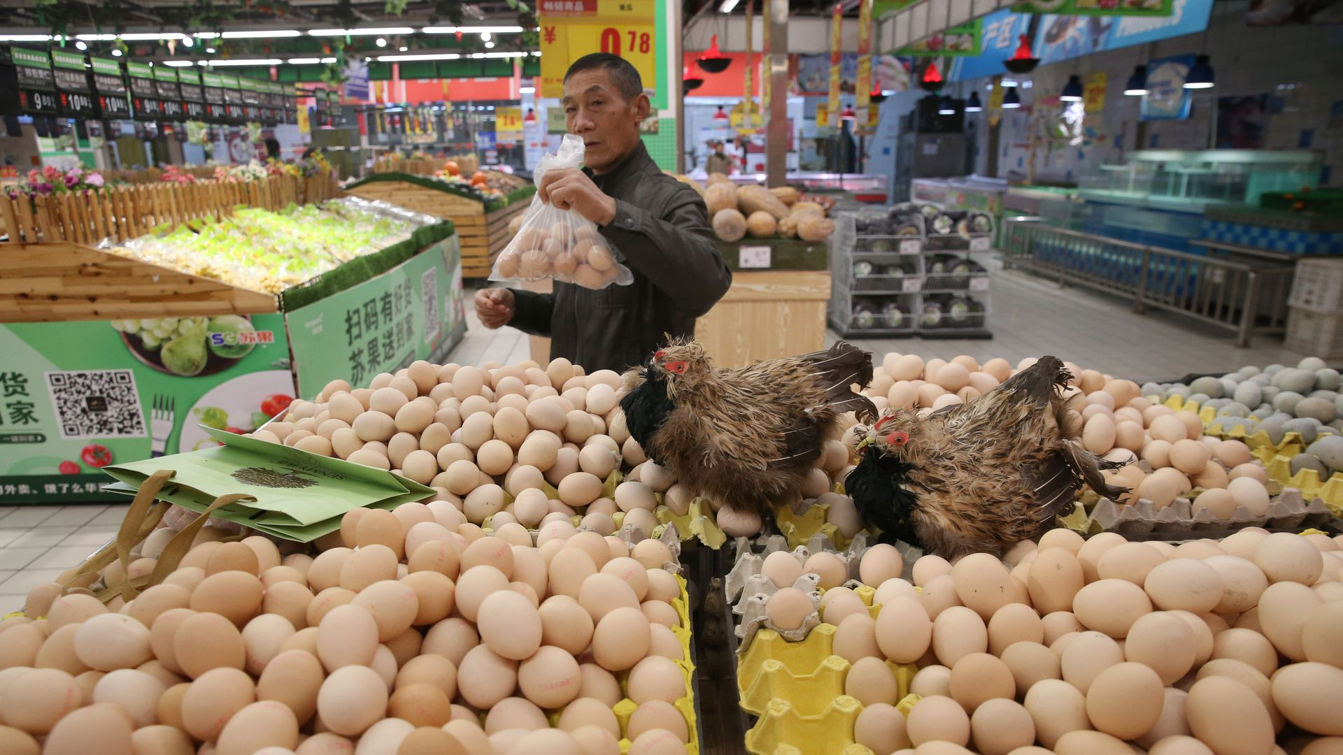 Study: 60% of research on eggs' cholesterol effect is industry-funded