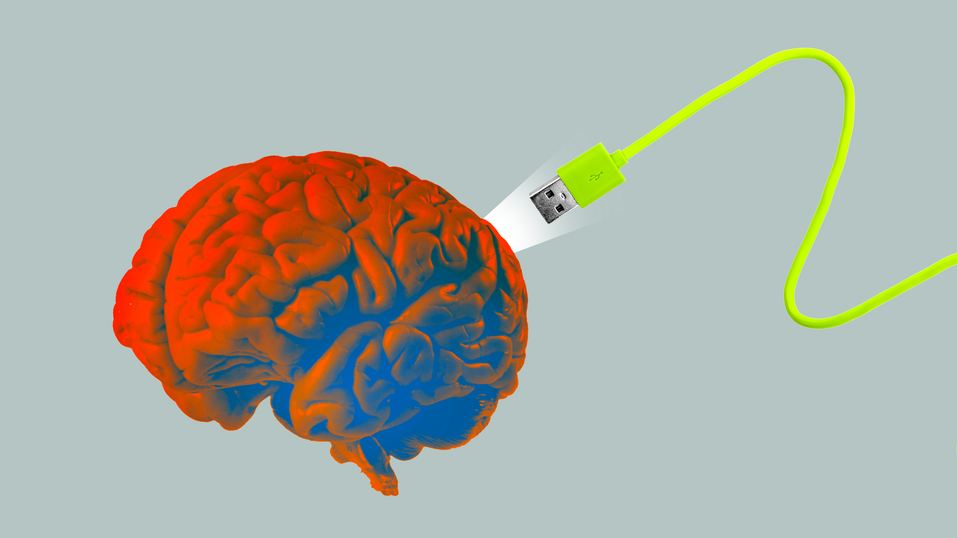 A usb cable plugging into a brain.