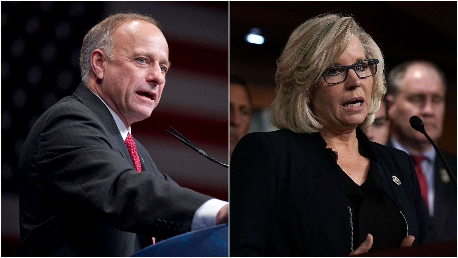 Republican Reps. Steve King and Liz Cheney.