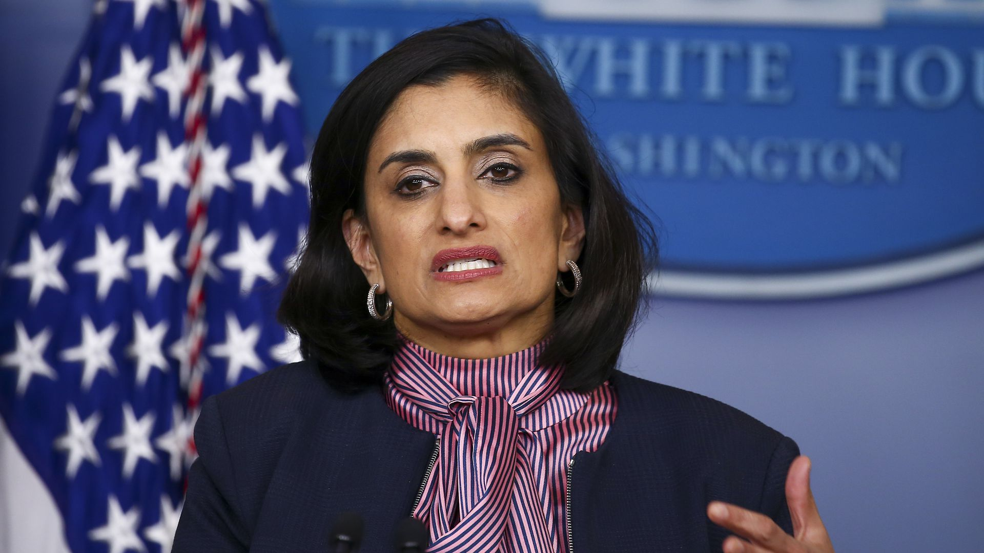 Seema Verma, administrator of the Centers for Medicare and Medicaid Services, speaks at the daily coronavirus briefing at the White House on April 19