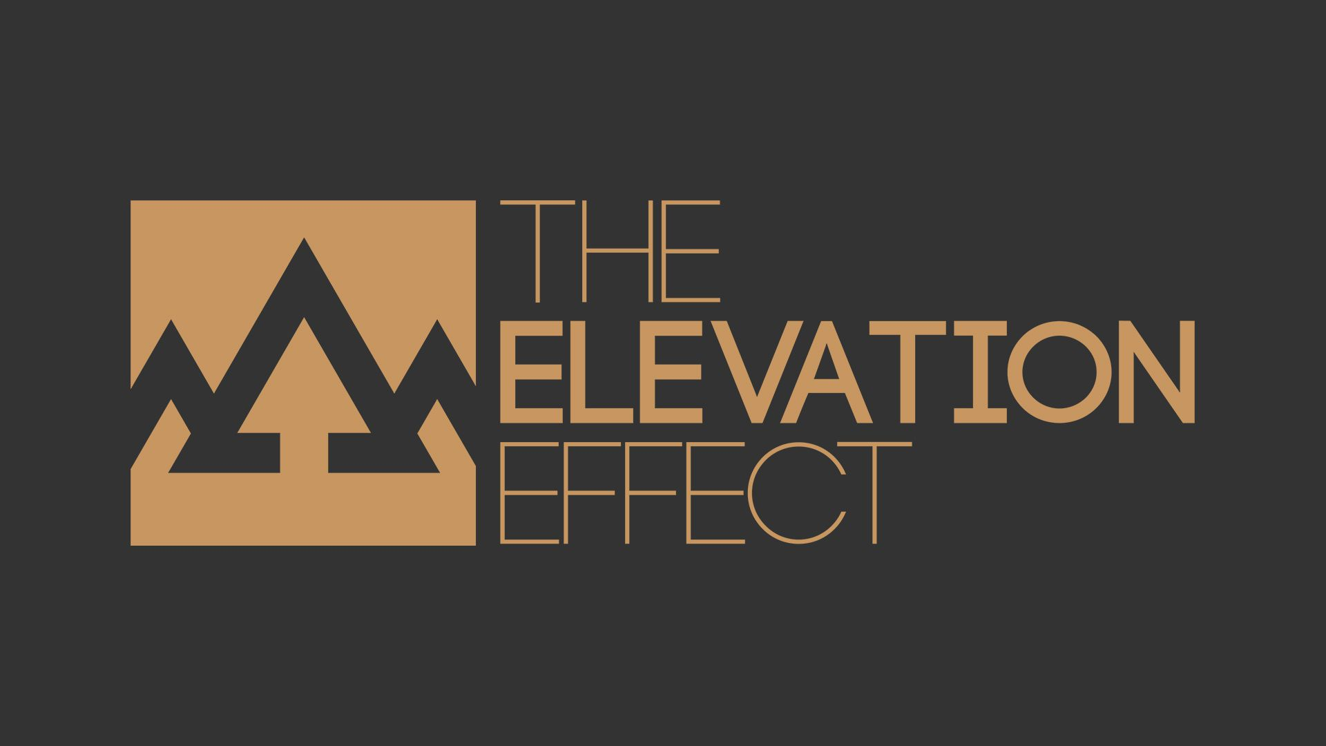 """A logo for """"The Elevation Effect"""""""