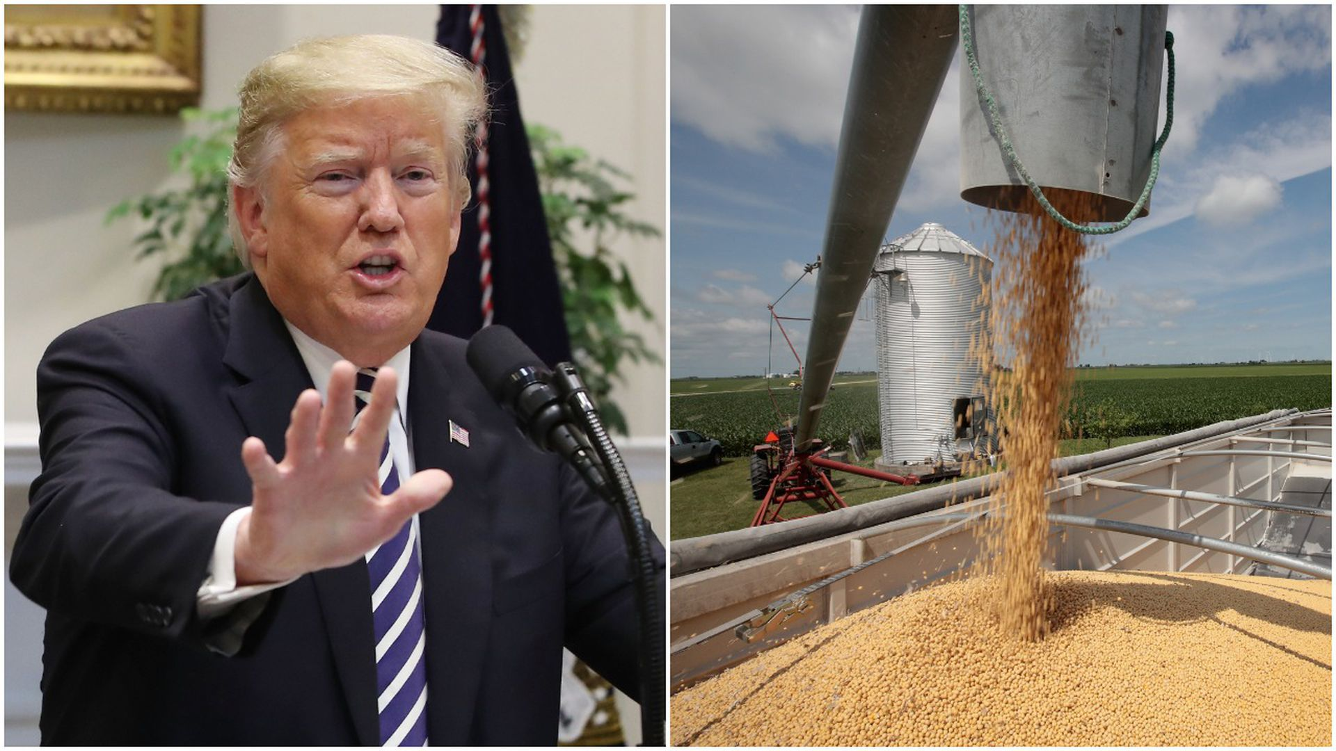 Trump and soybeans
