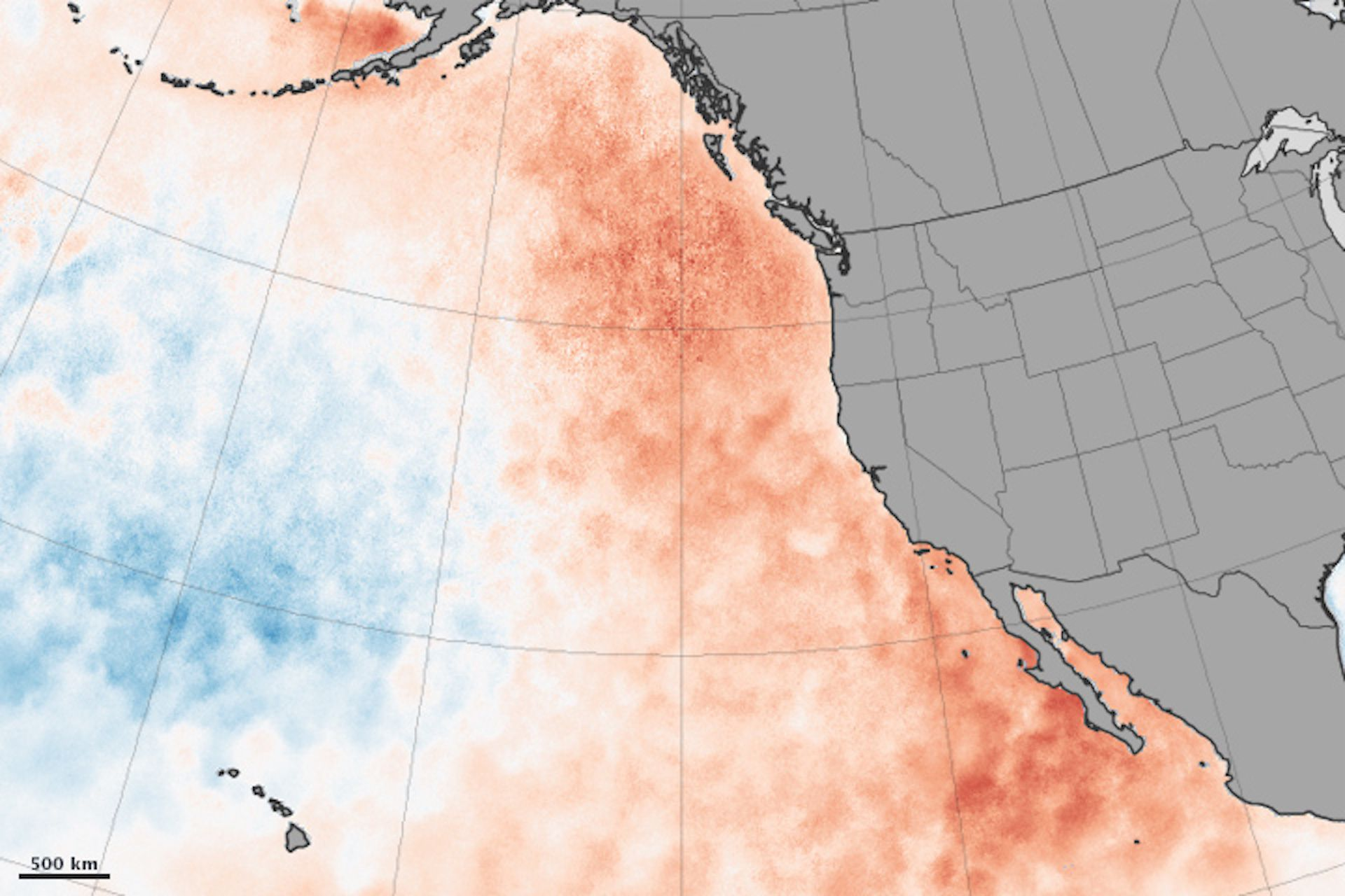 Sea surface temperature anomalies in the northeastern Pacific Ocean in March 2015.