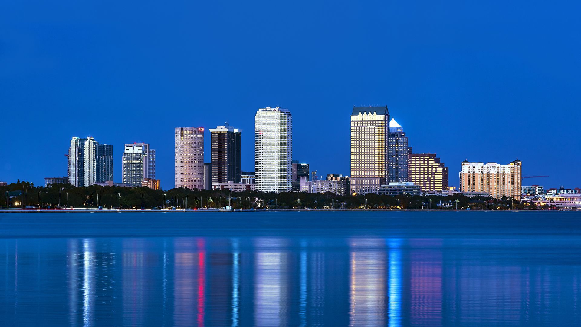 Picture of Tampa Bay buildings