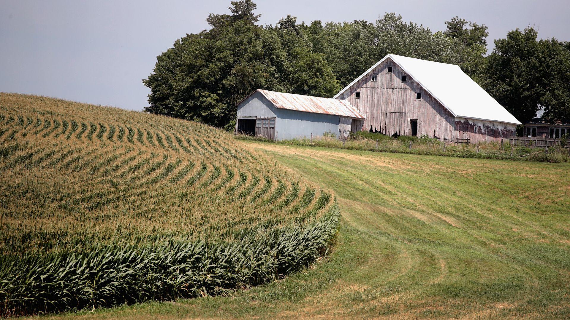 A small family farm in Iowa