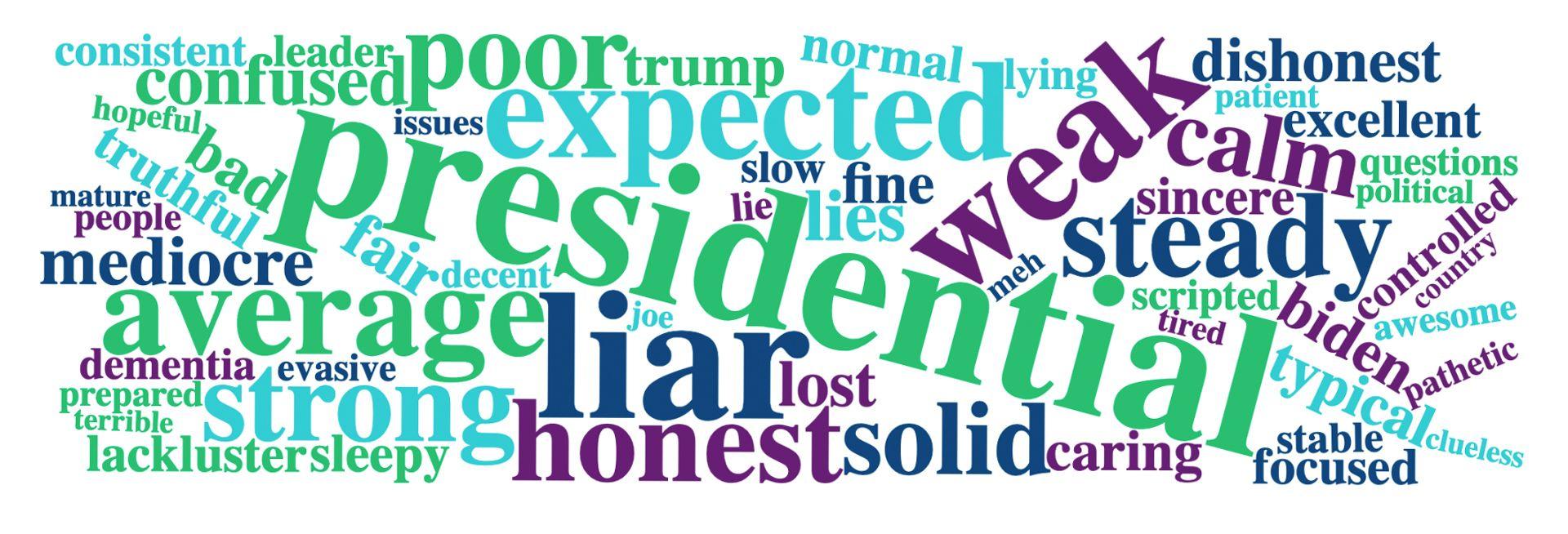 Biden word cloud