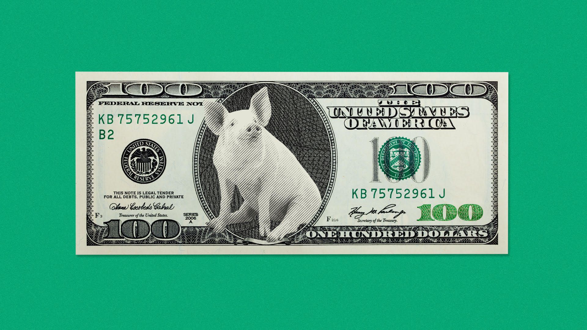 Illustration of a pig on a $100 bill