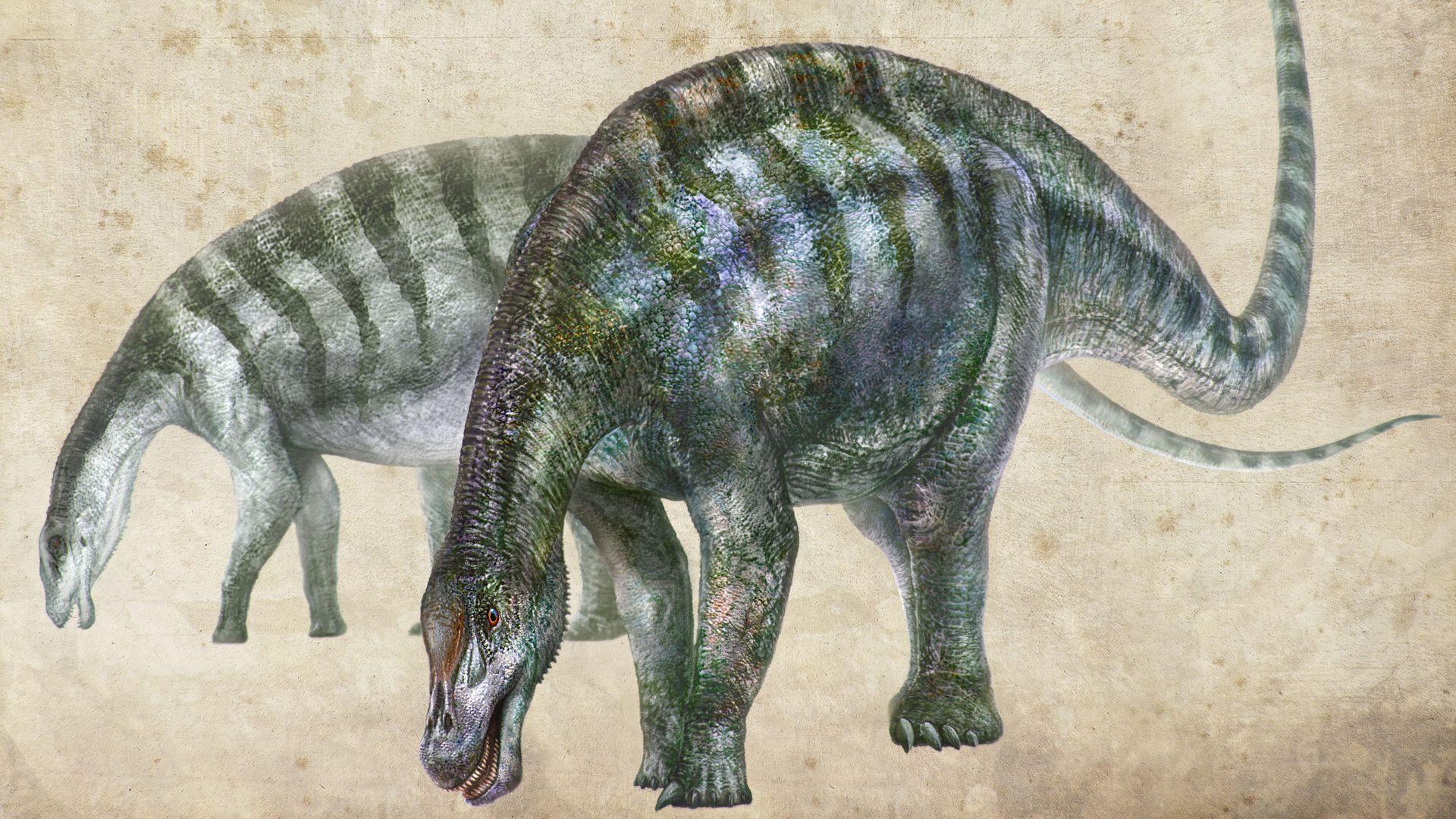 An artist's rendering of new dinosaur Lingwulong shenqi