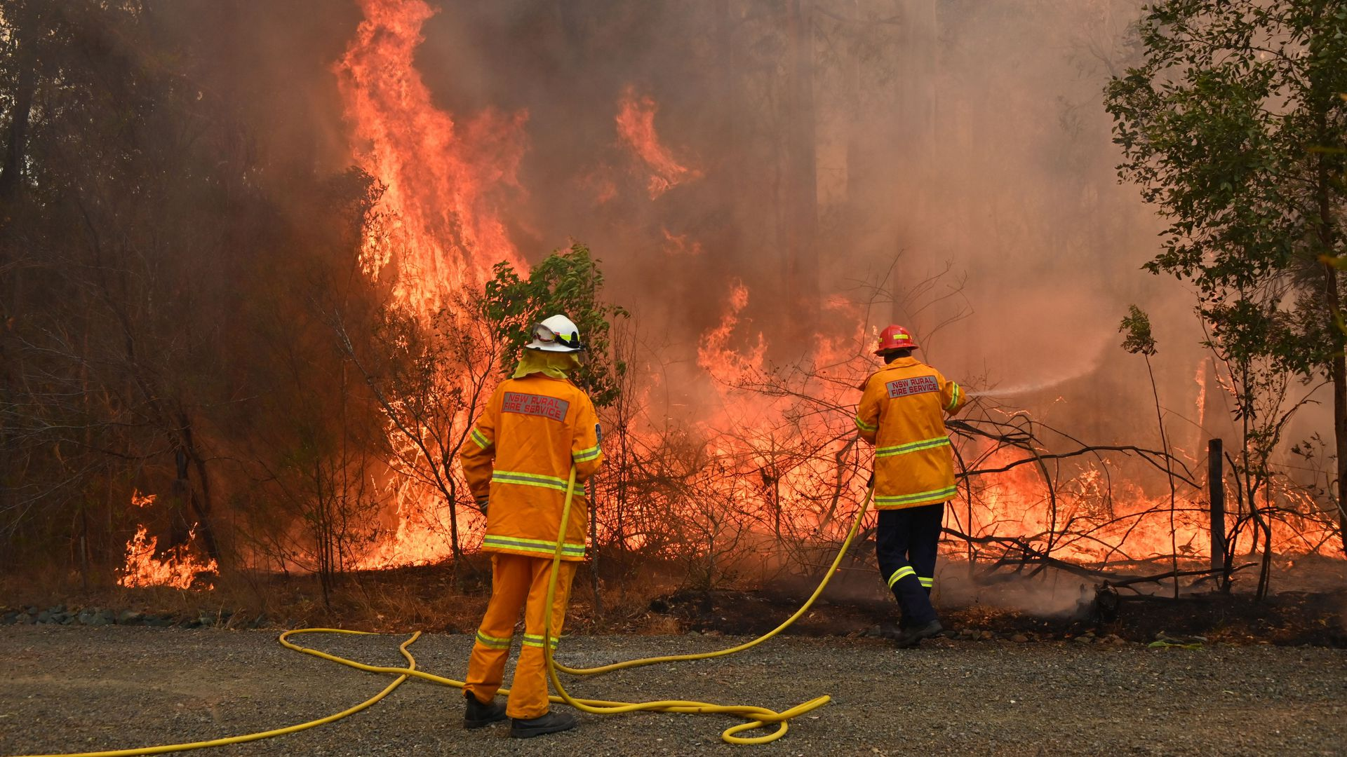 In photos: Deadly wildfires trigger state of emergency declarations in eastern Australia
