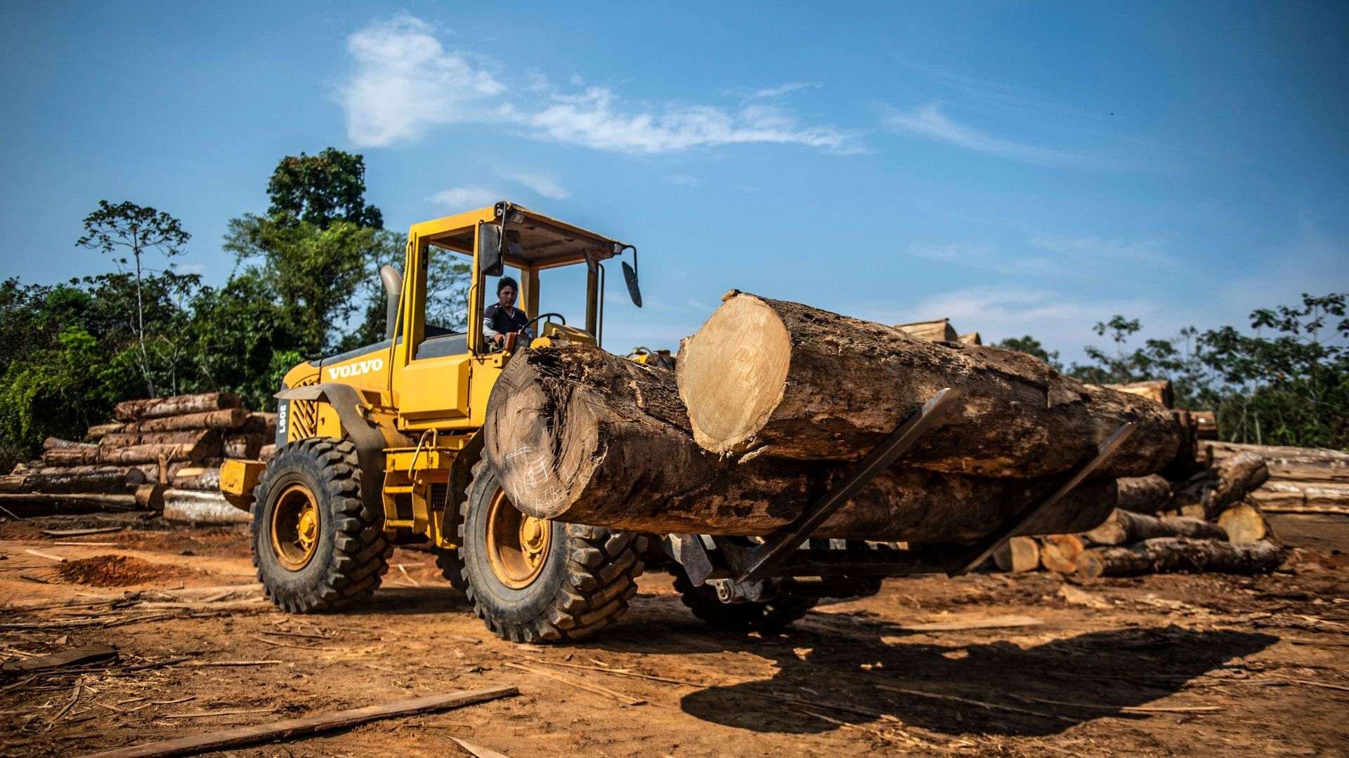 A tractor picks up a large piece of a tree.