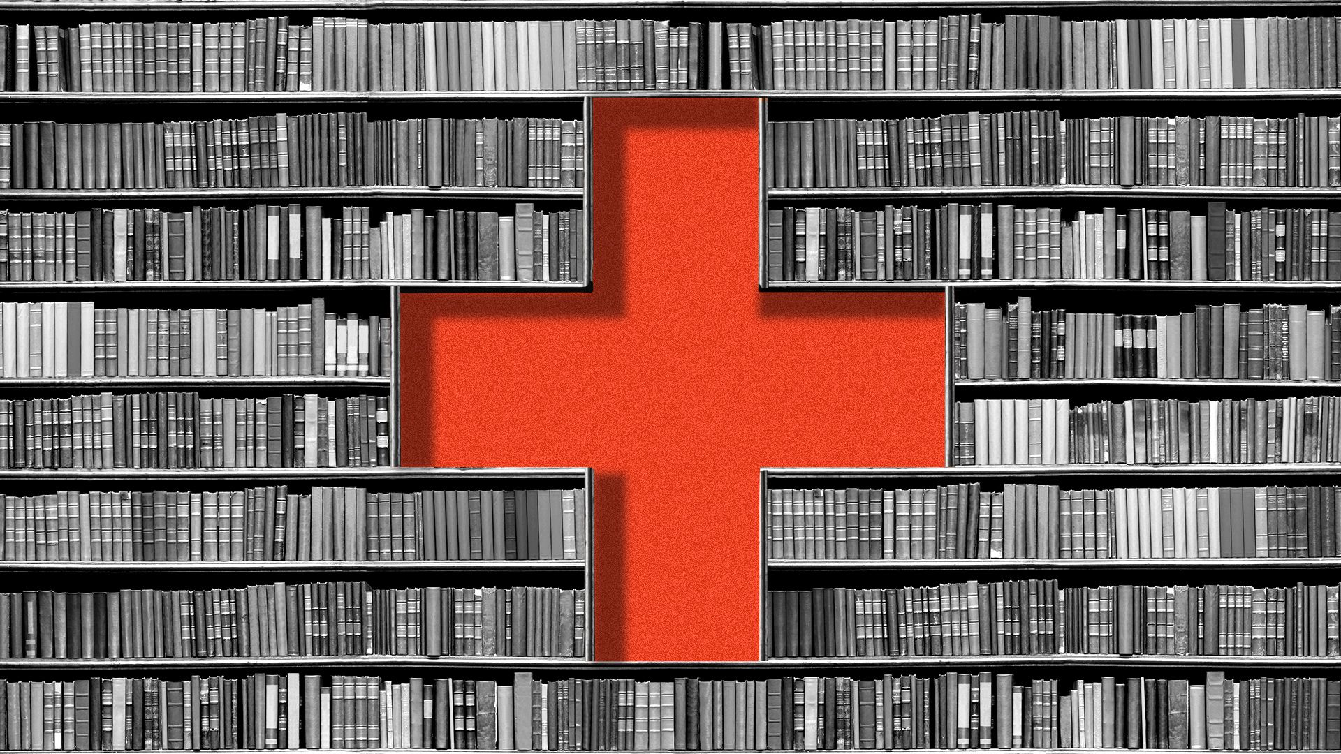 Public libraries are now mental health resource centers