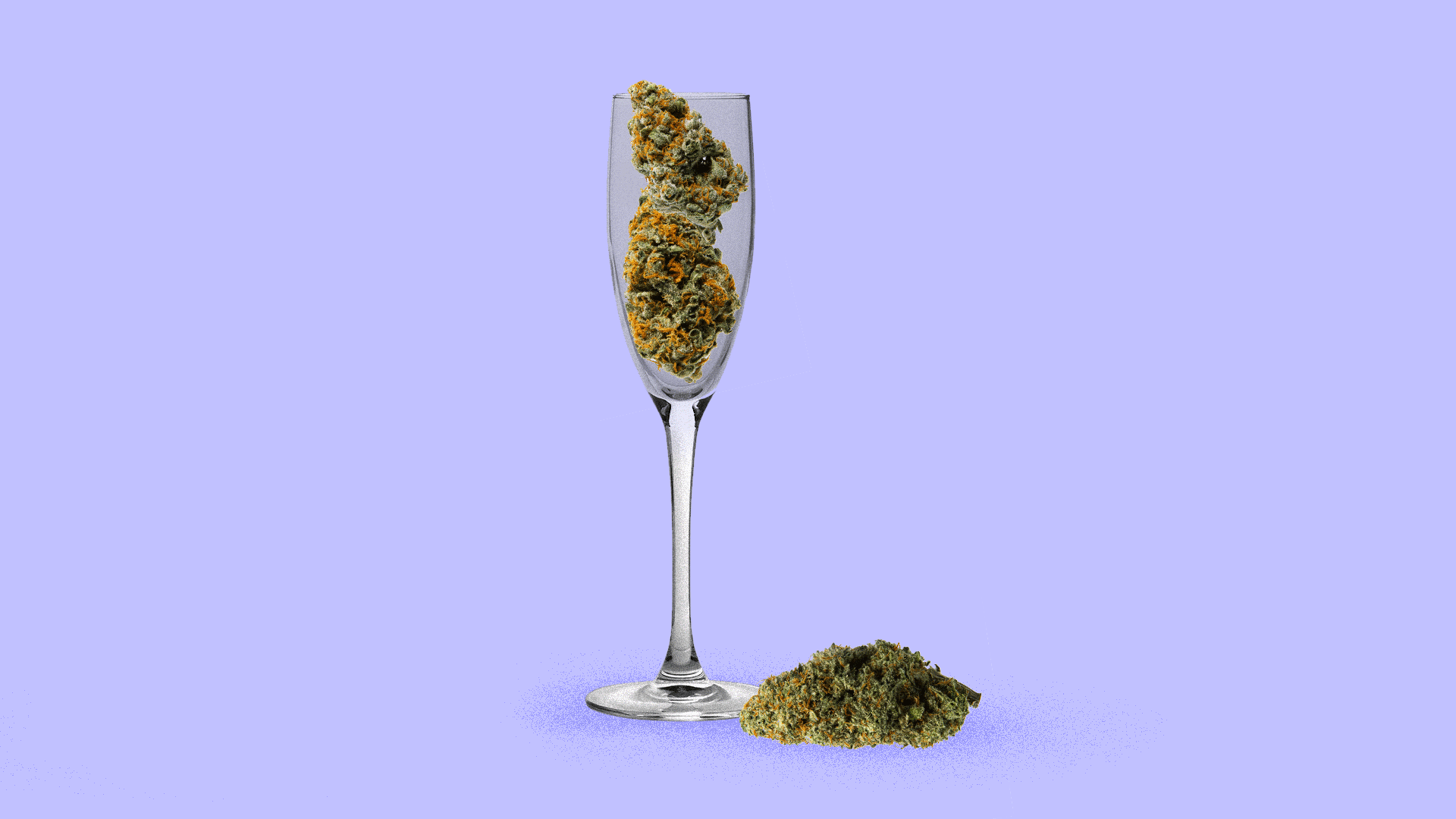 Illustration of marijuana buds in a champagne flute.