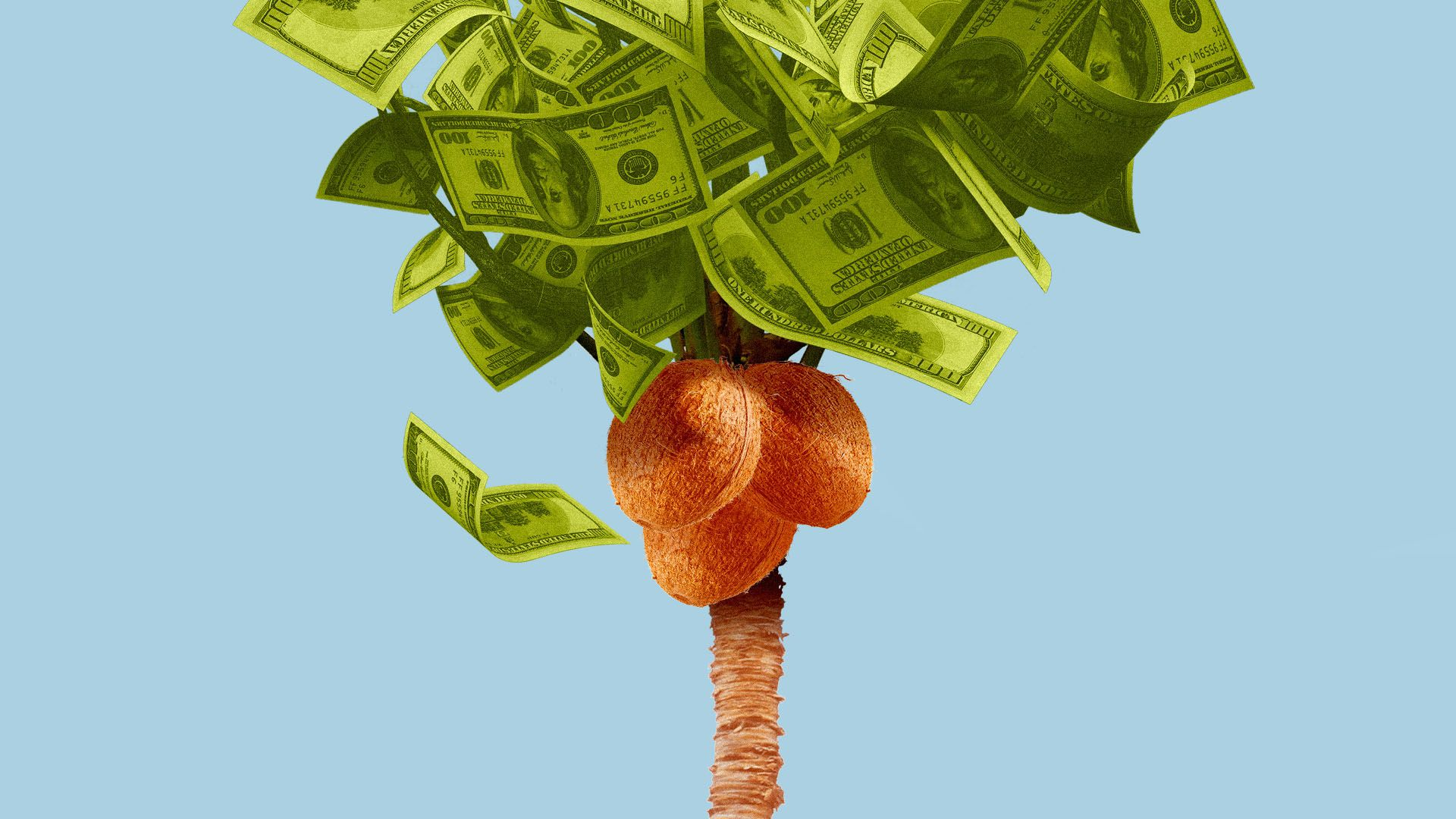 Illustration of a coconut tree with money for the leaves.