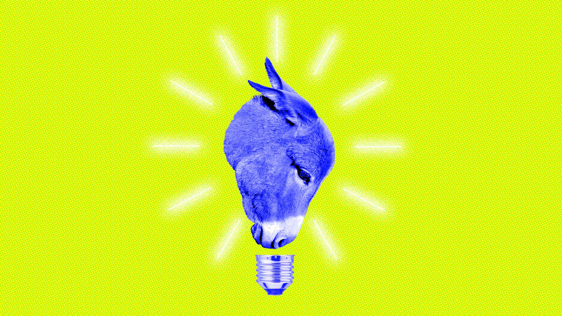 This is a donkey and a lightbulb, a symbol of the 2020 Democratic presidential election race