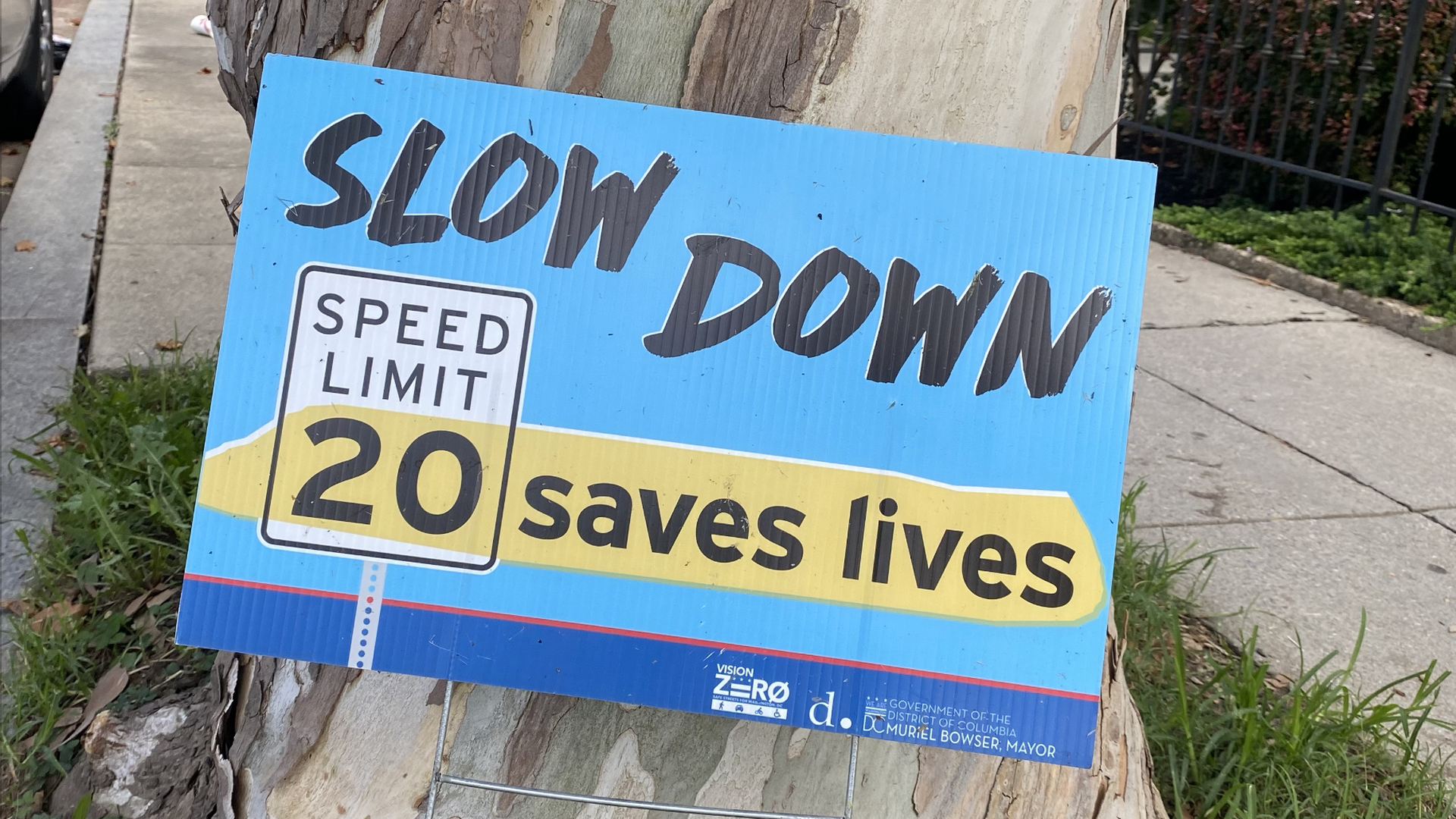 """A blue campaign-style sign that reads """"Slow down 20 (speed limit) saves lives."""